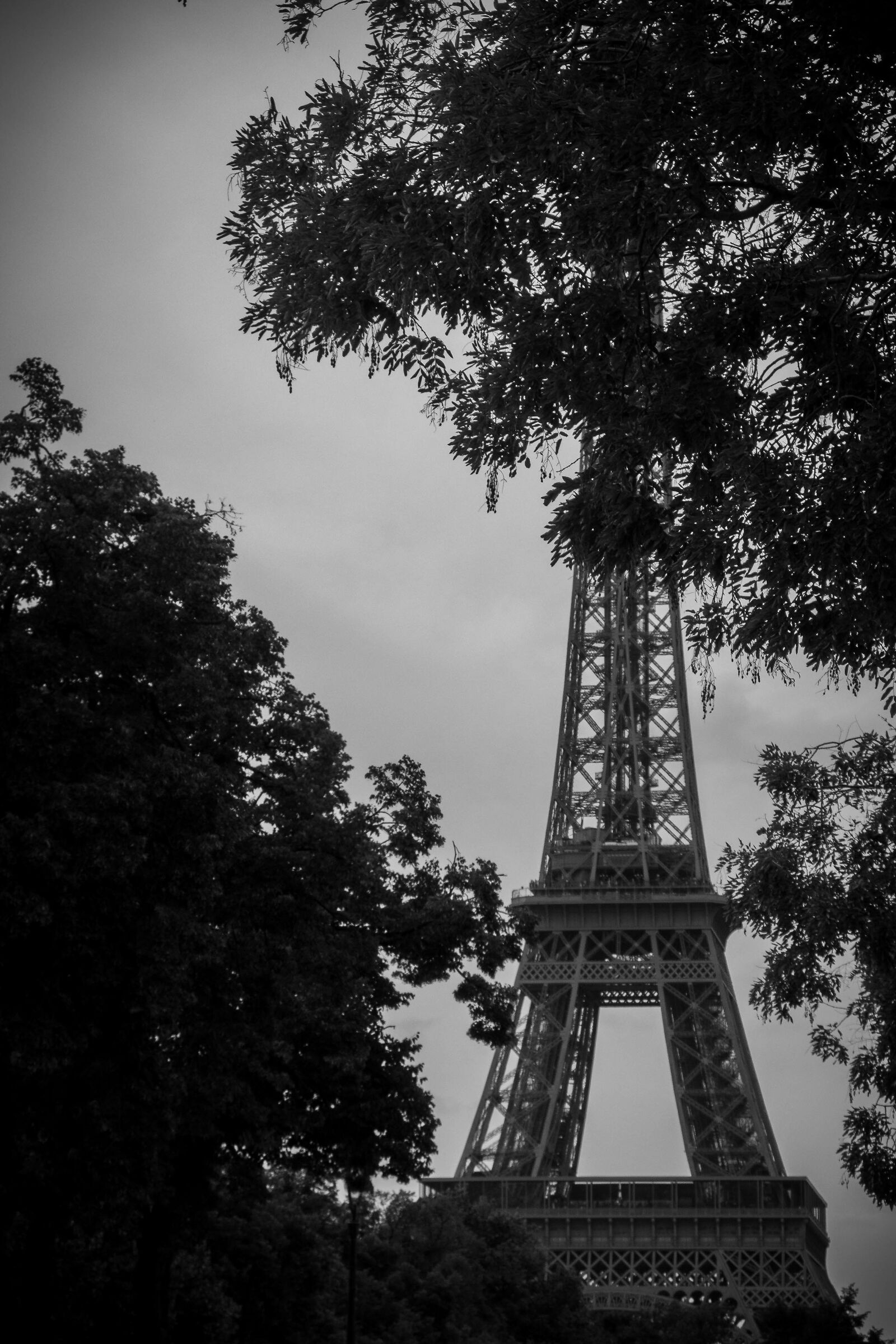 The Eiffel Tower...