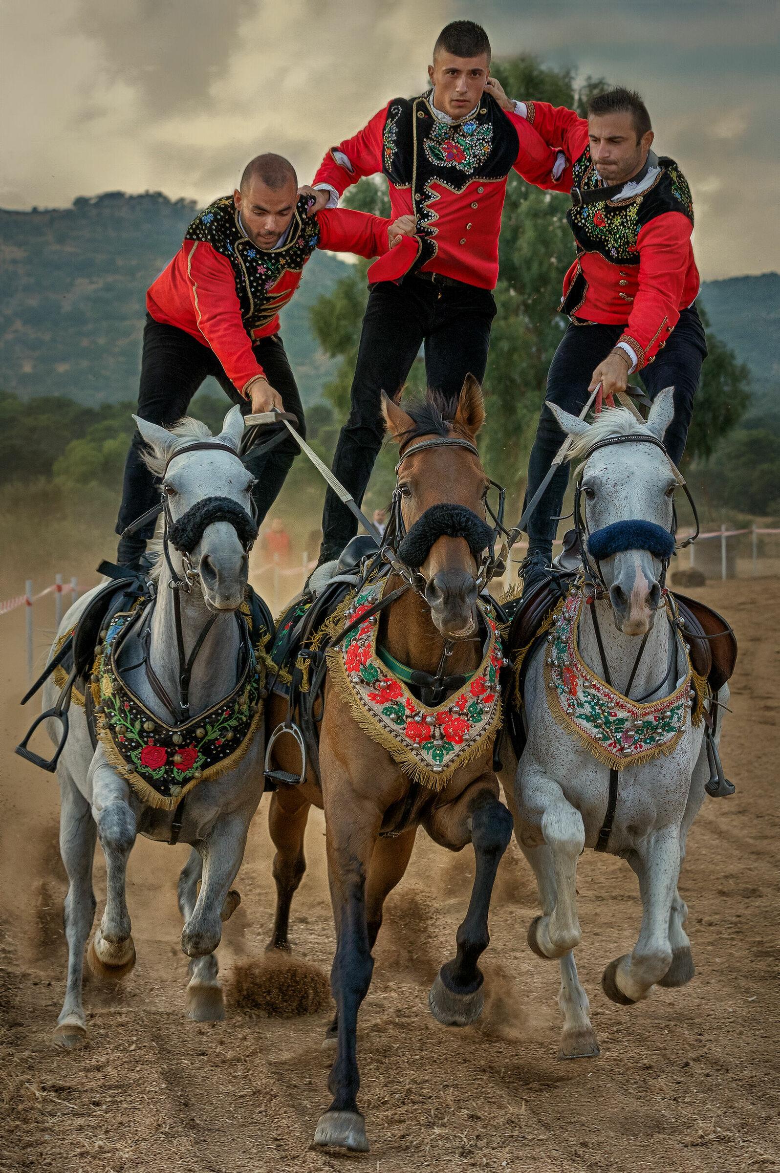 Horses and knights of Sardinia...