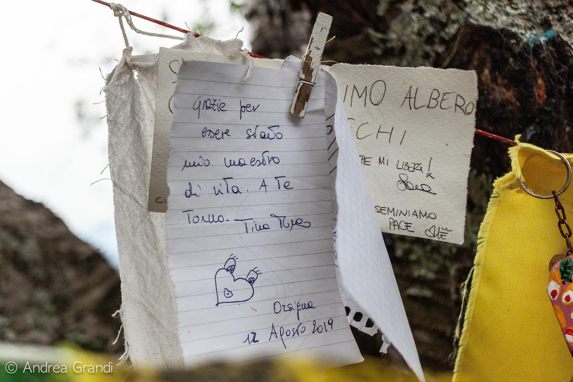 Biglietti con frasi in omaggio a Tiziano Terzani...