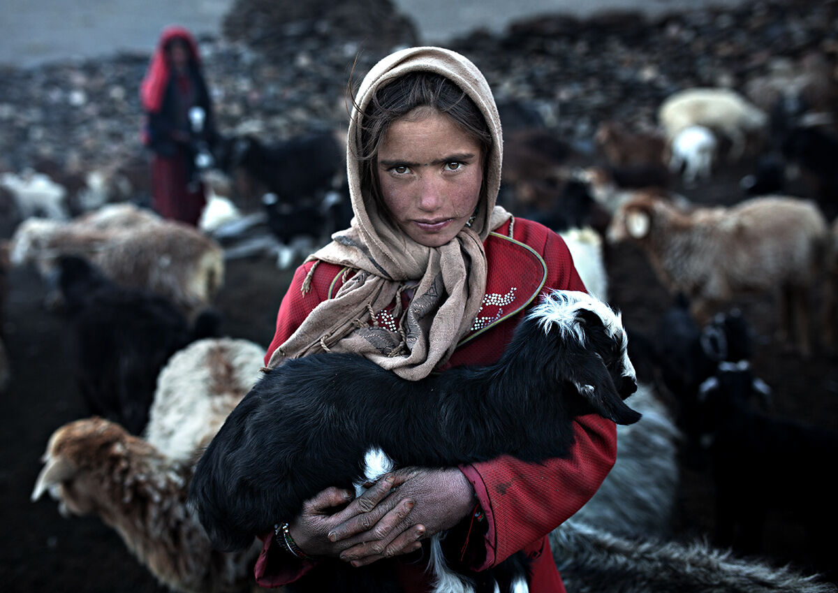 giovane pastore, Afghanistan...