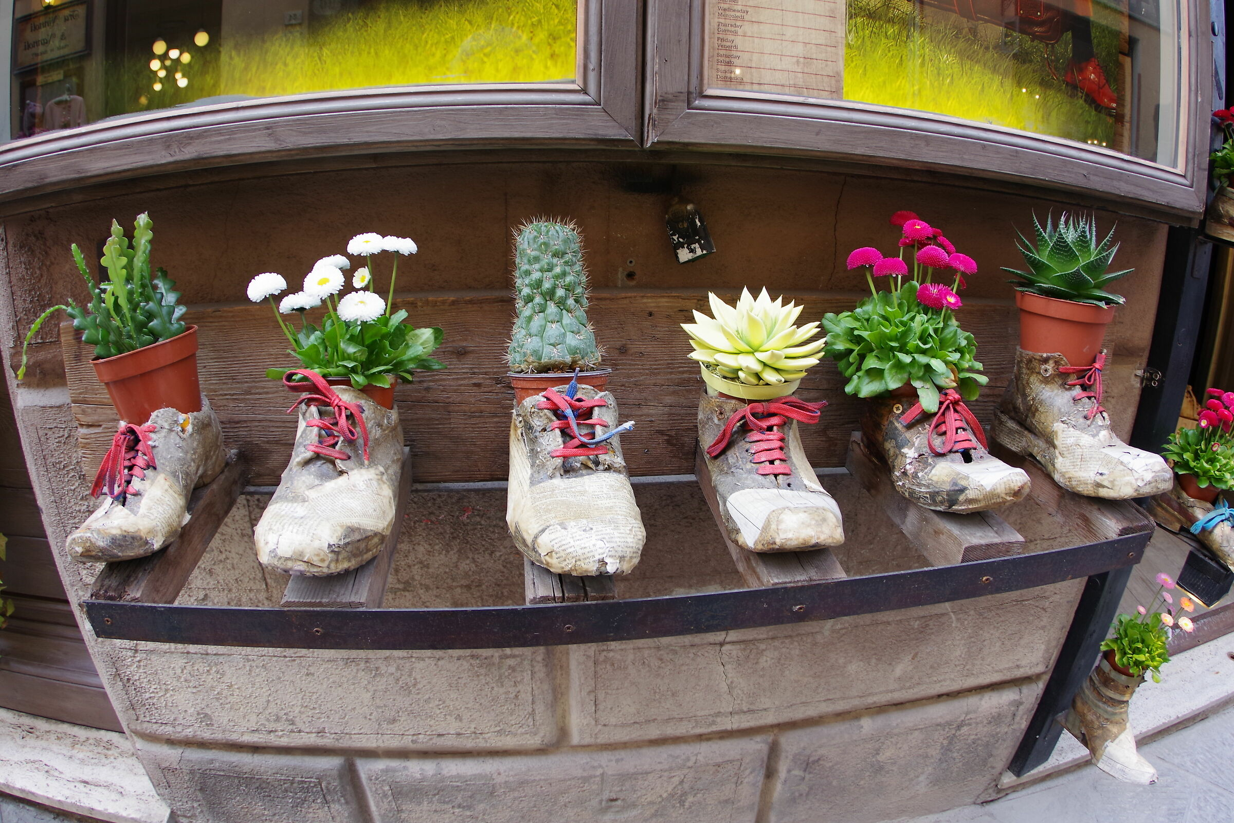 Shoes in Flower...