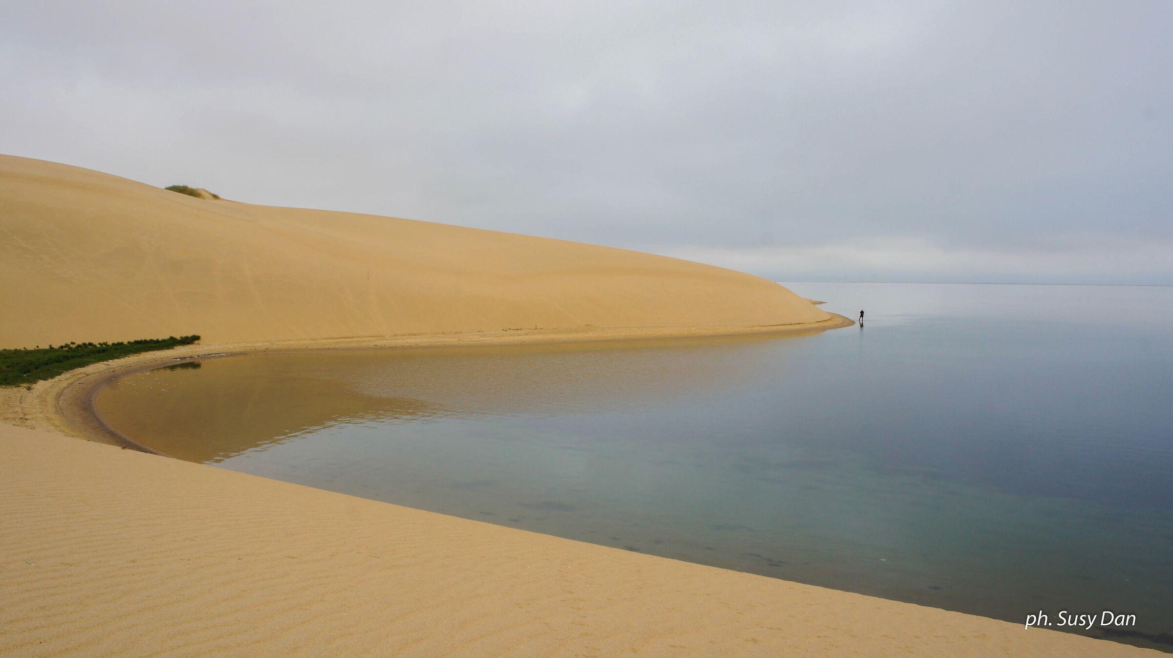 Dove il deserto incontra l'oceano...