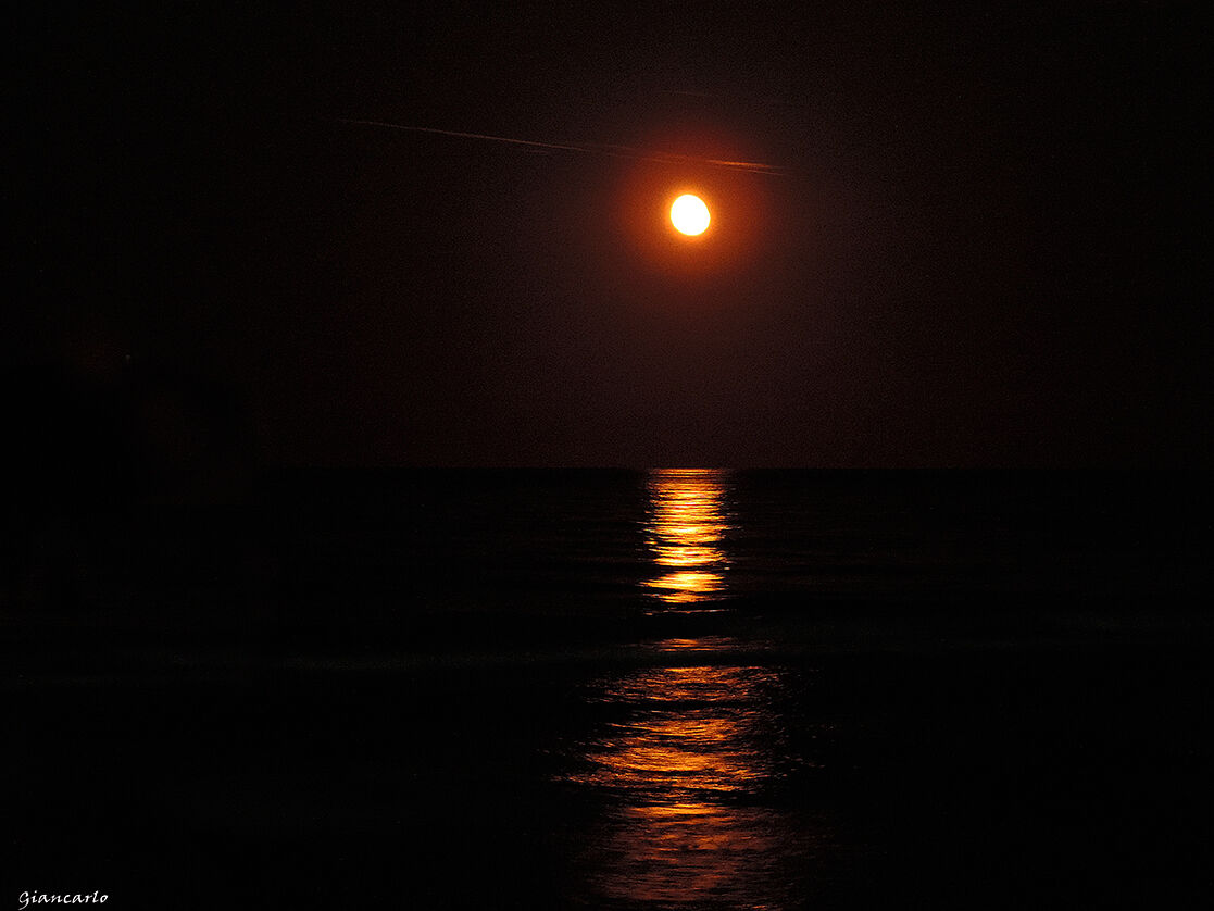 Moon Sunrise...