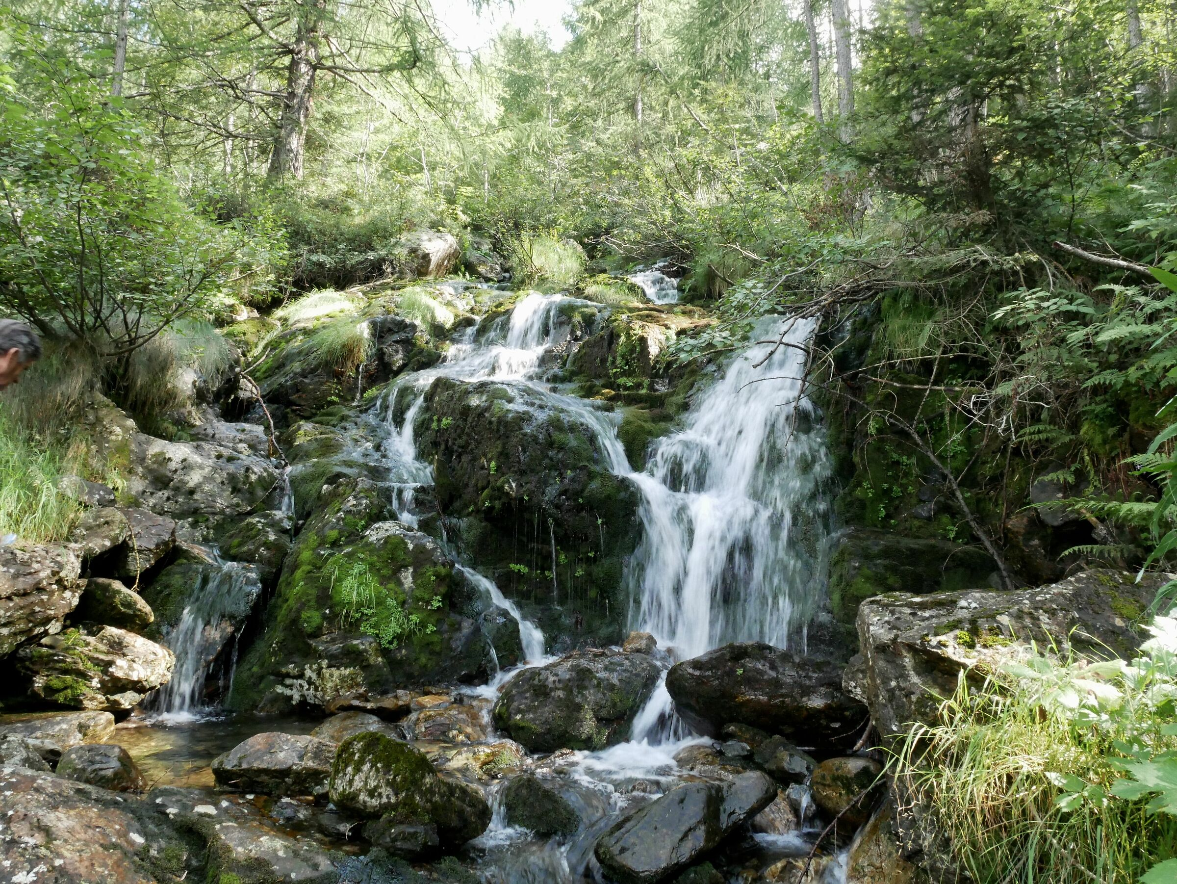 Water is smart, pragmatic, efficient...