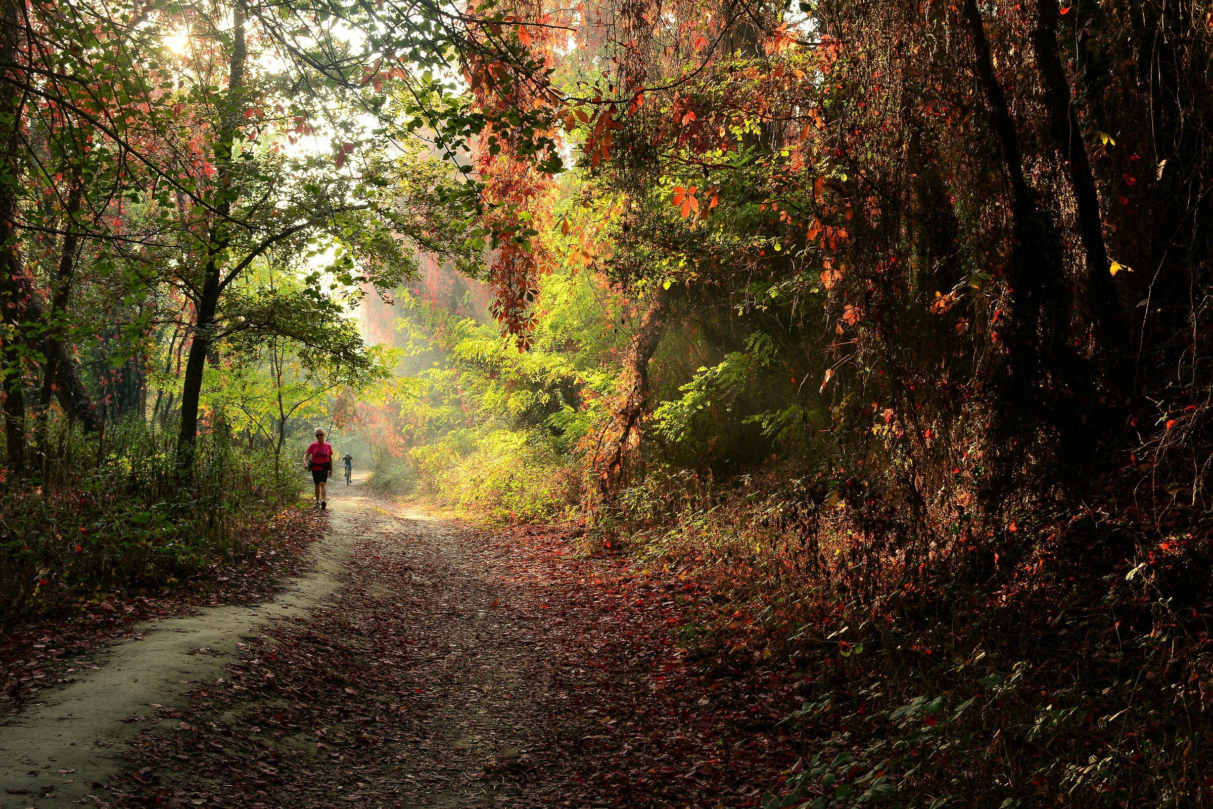 Autumn fragrance...