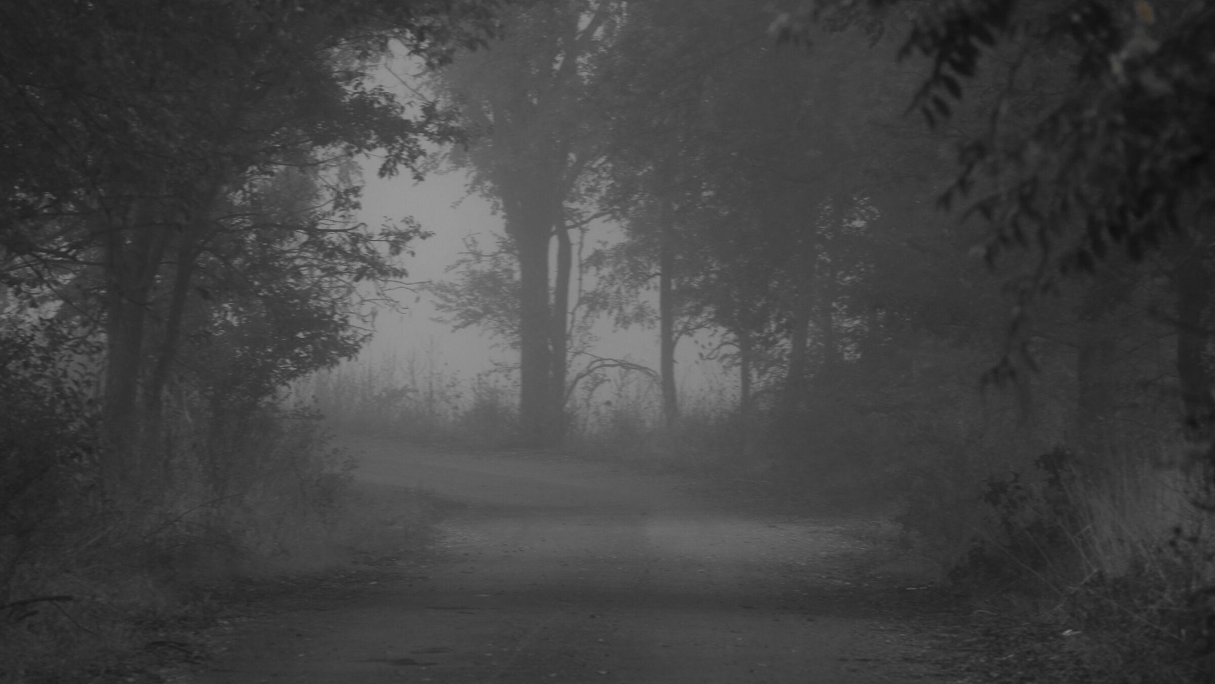 October fog...