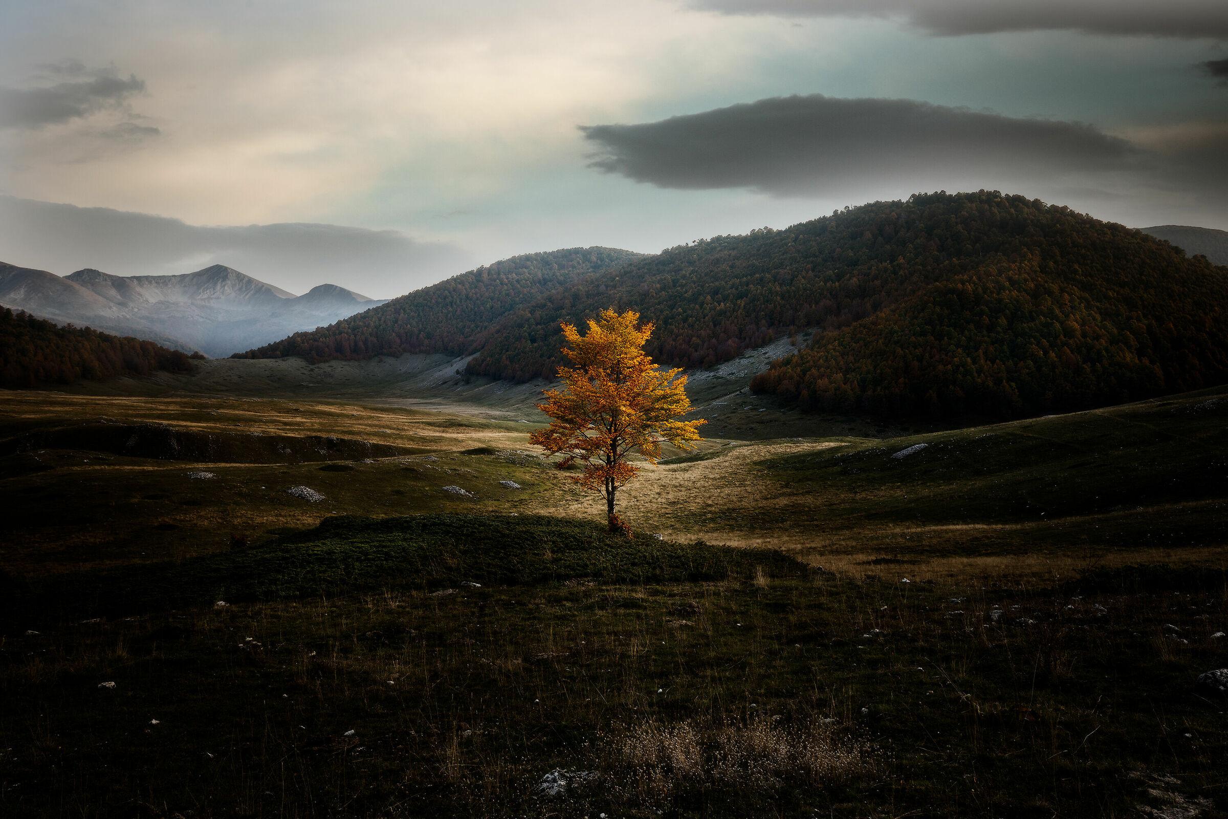 The Plain of Terraegna...