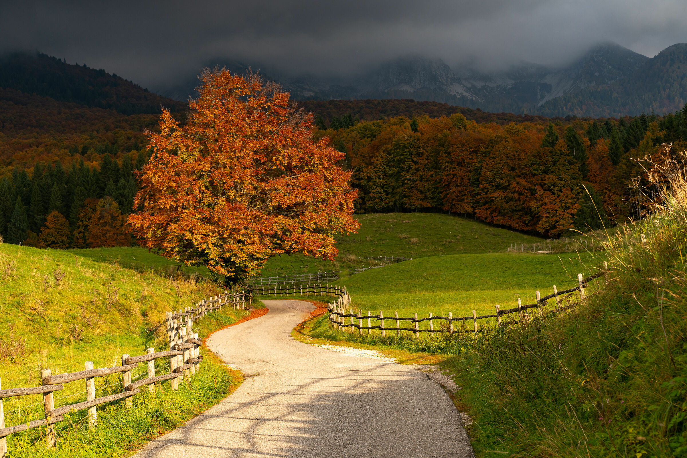 Col Indes in autumn...