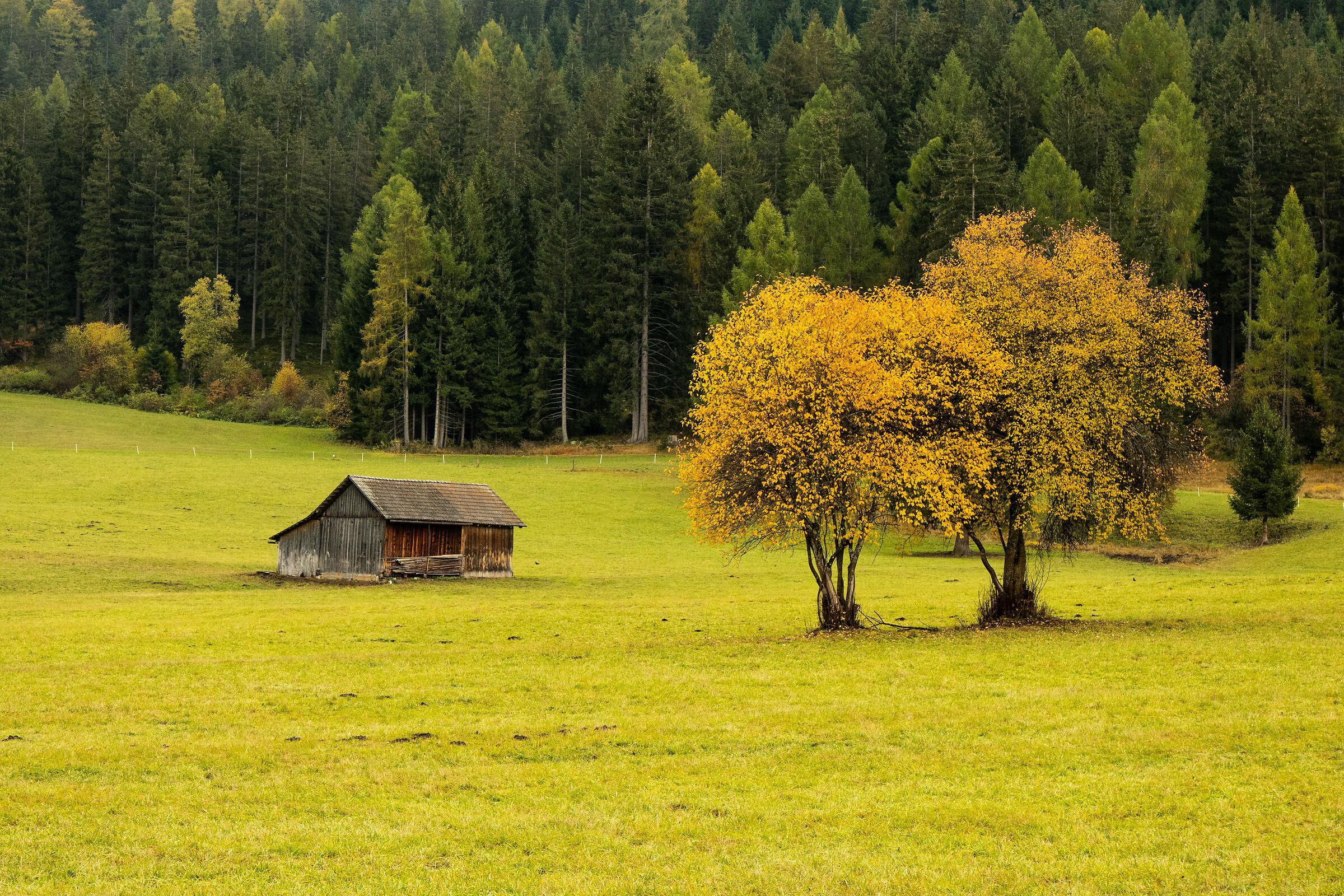 autumn on the Dolomites...