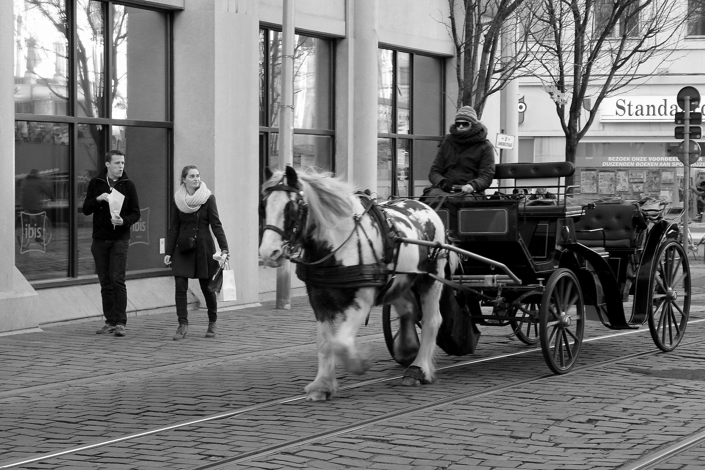 Passeggiando per Gand e Bruges...