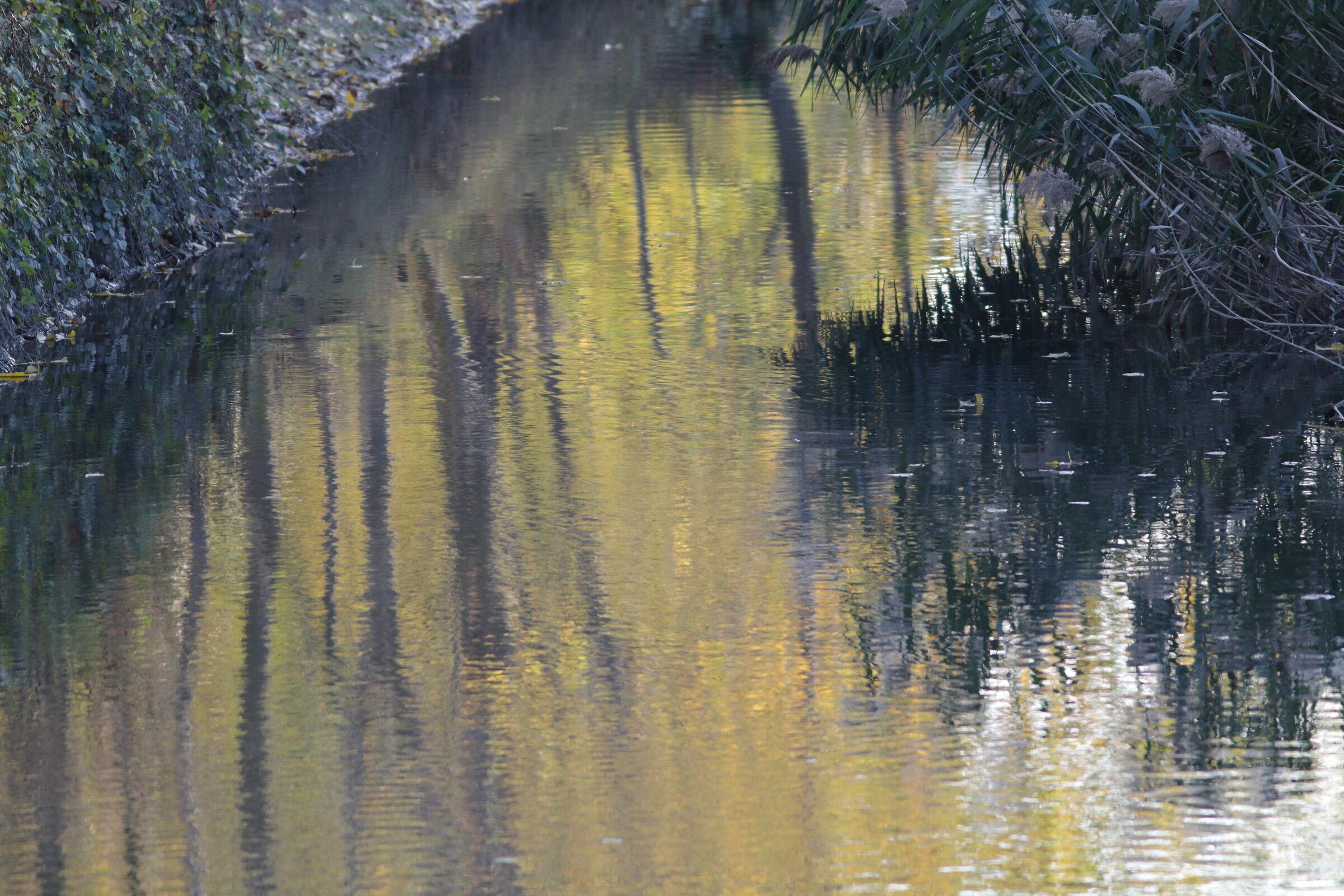 autunno sul fiume...