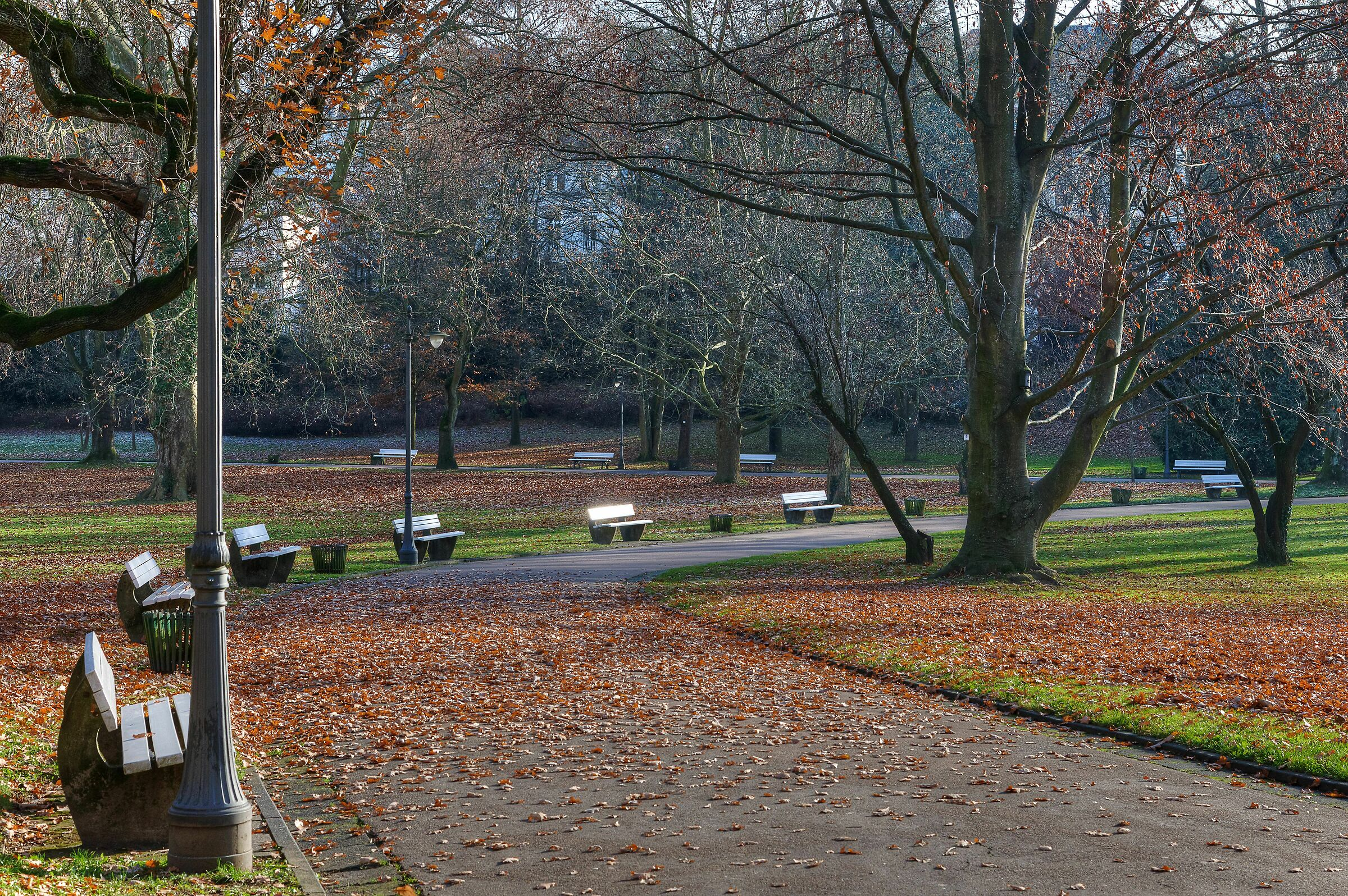 Fall in the Park; Wiesbaden, Germany...