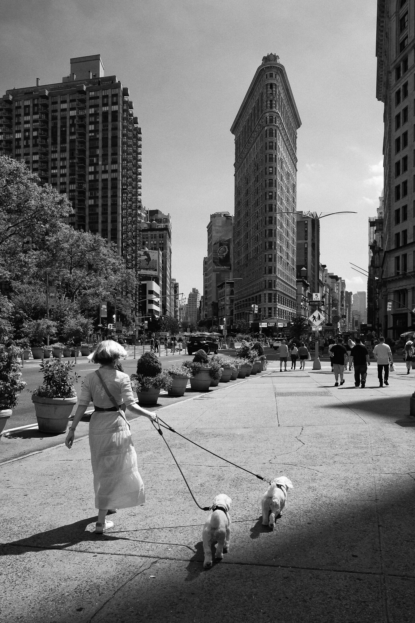 NY Street 0045...
