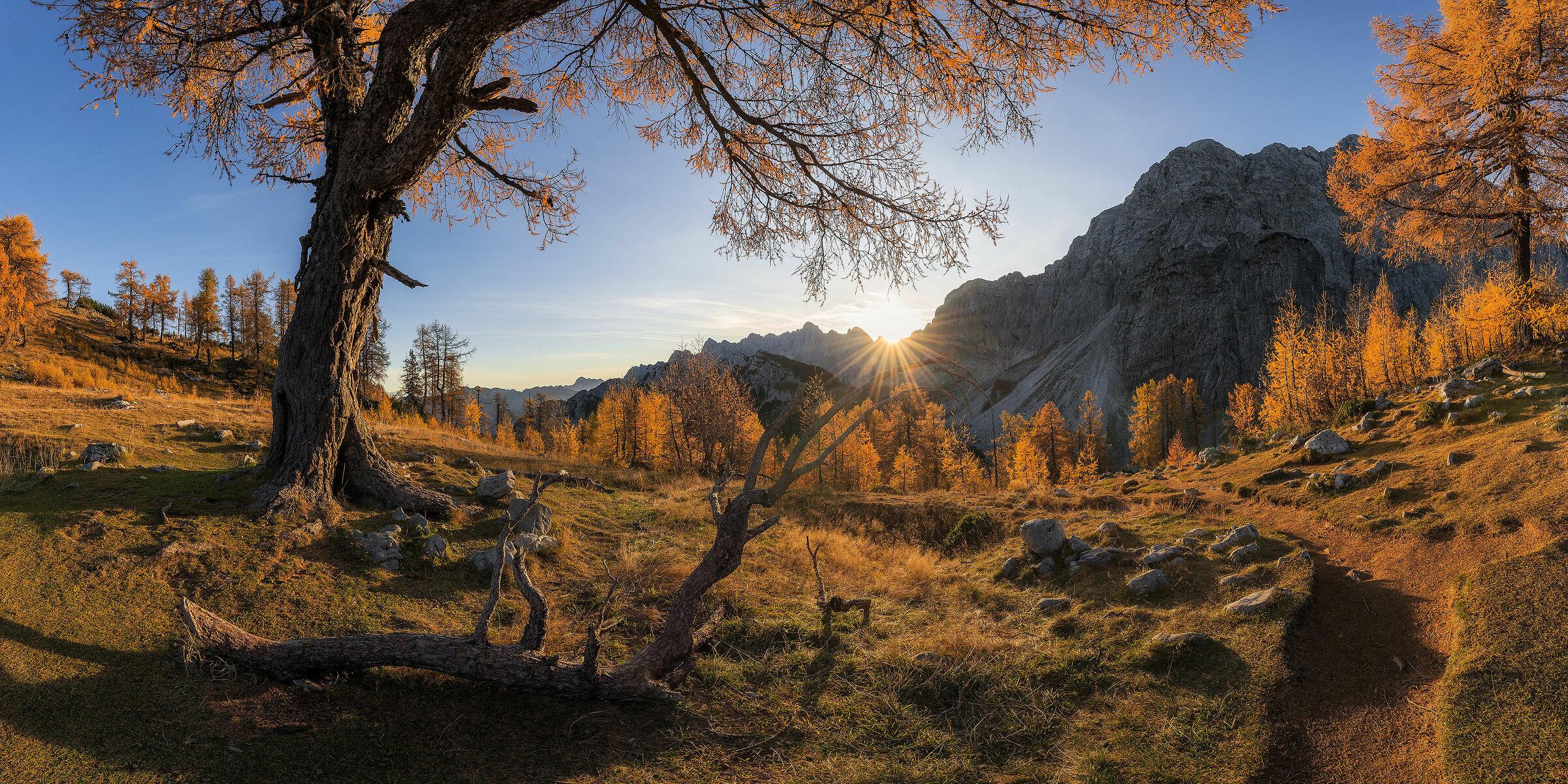 Autumnal paradise...