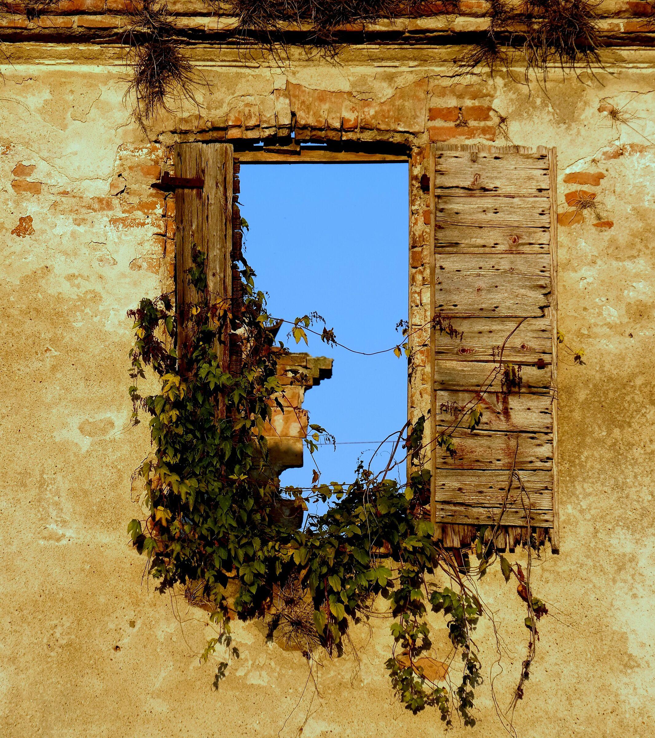 Window on the sky...