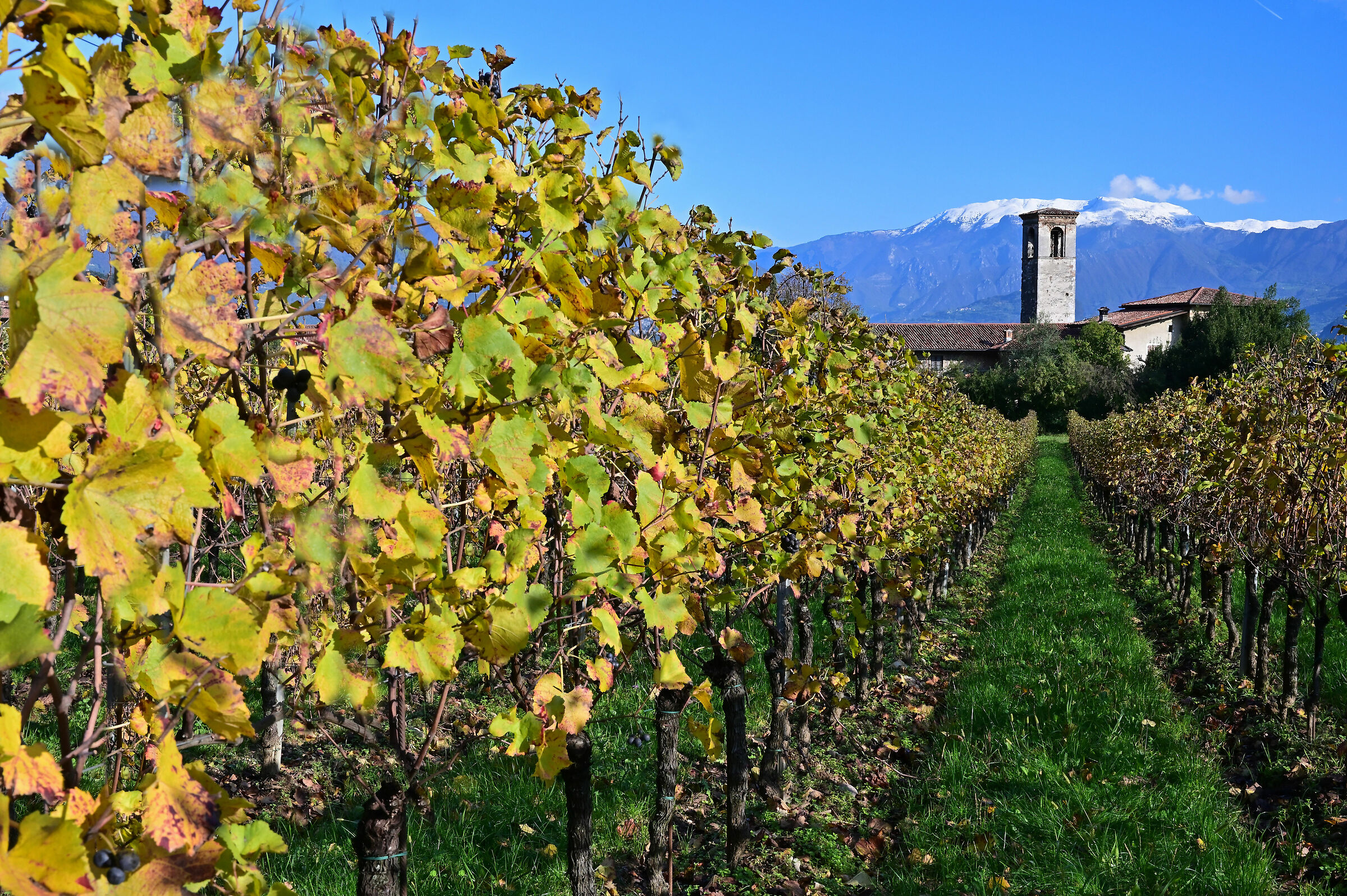 Adro-even this is Franciacorta....