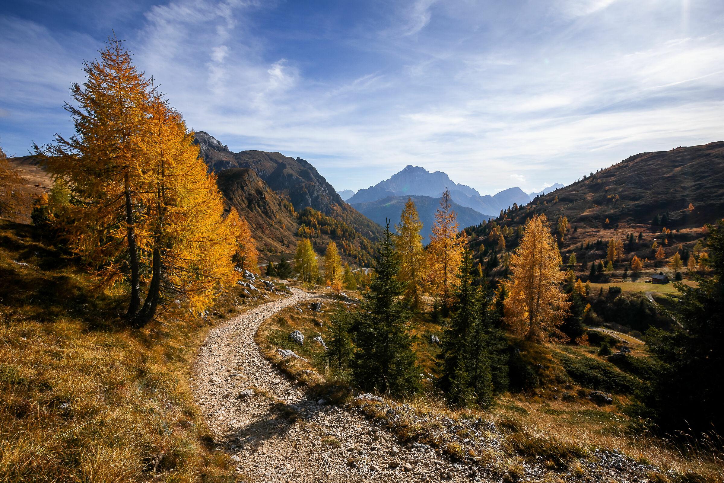 Sentiero d'autunno...