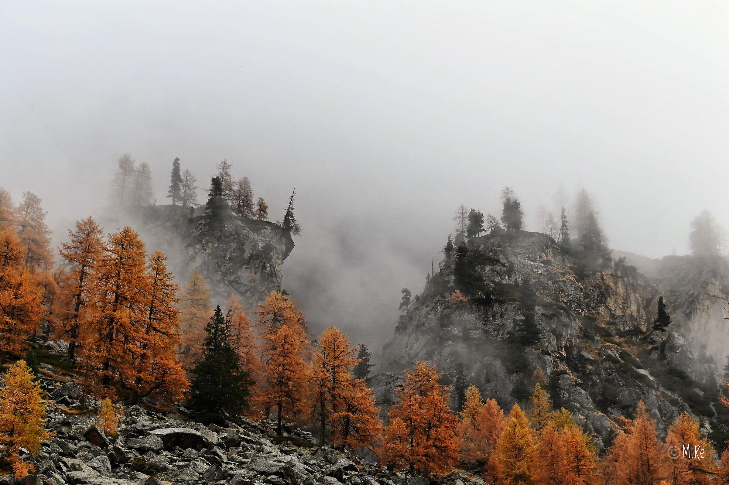 Fog in orange...