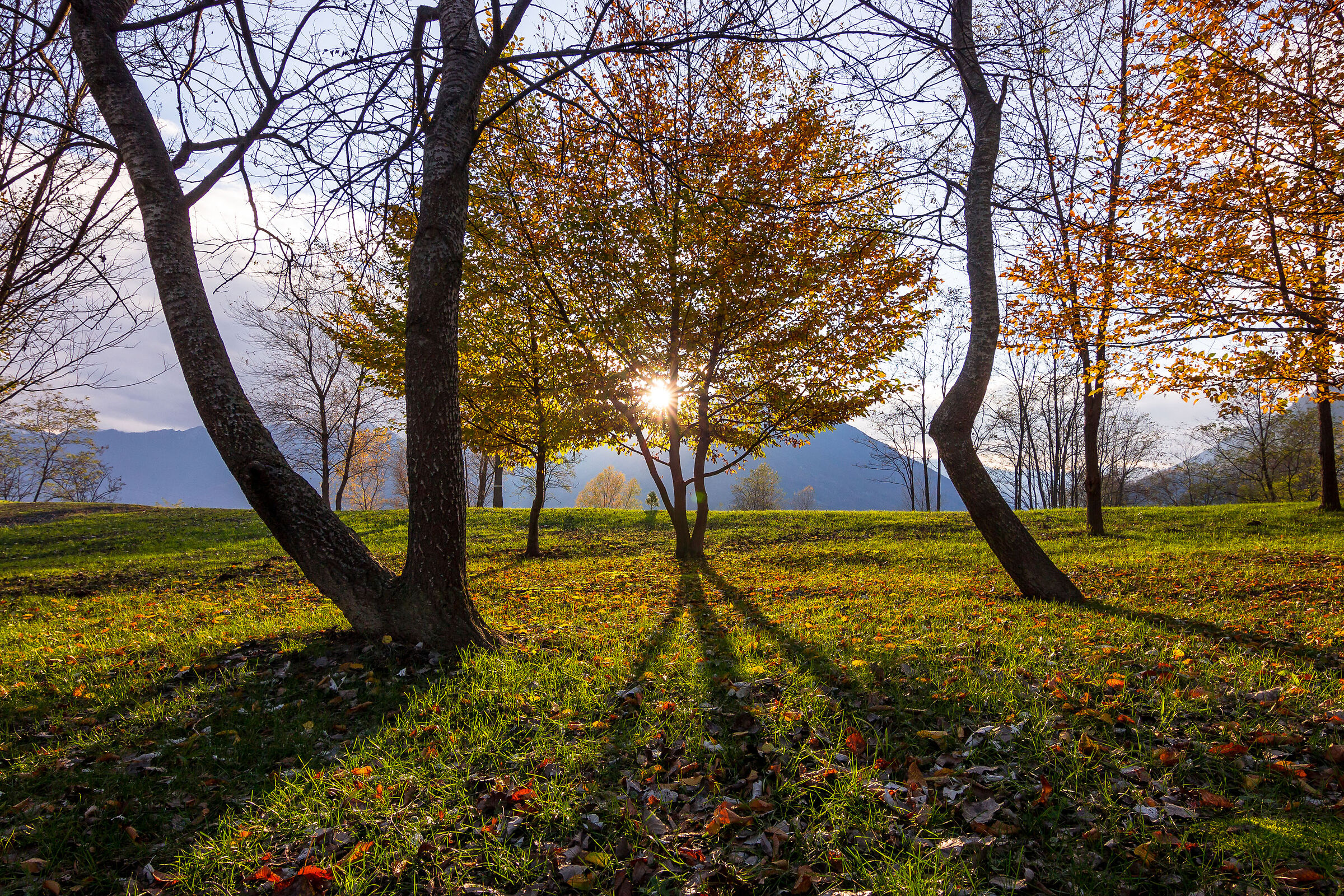 Ultimo sole autunnale....