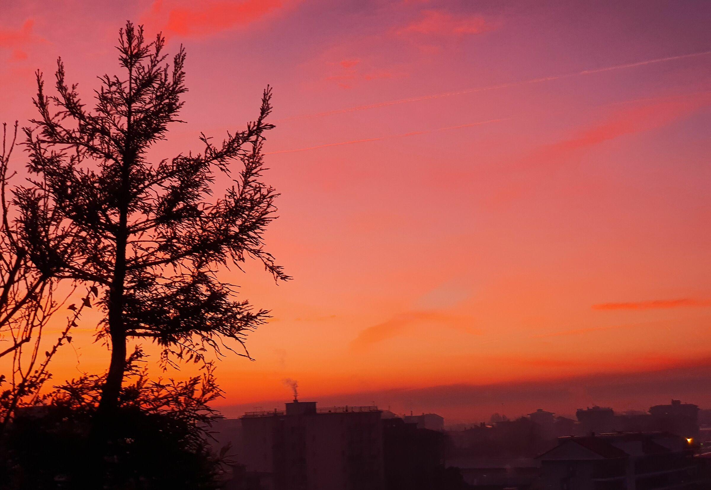 Colors of a Winter Dawn in Corsico...