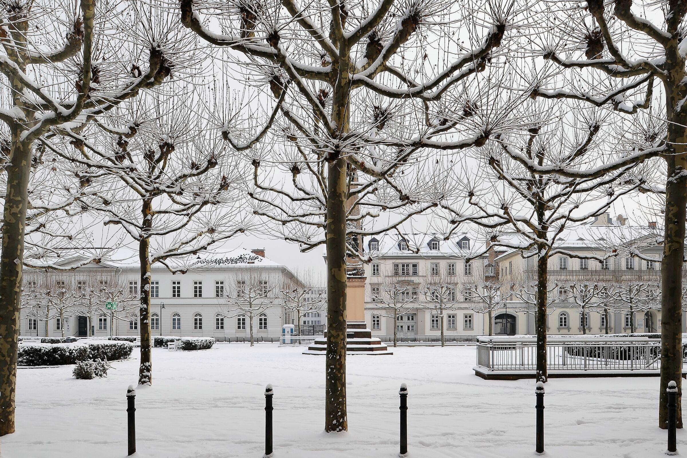 Winter; Wiesbaden, Germany...