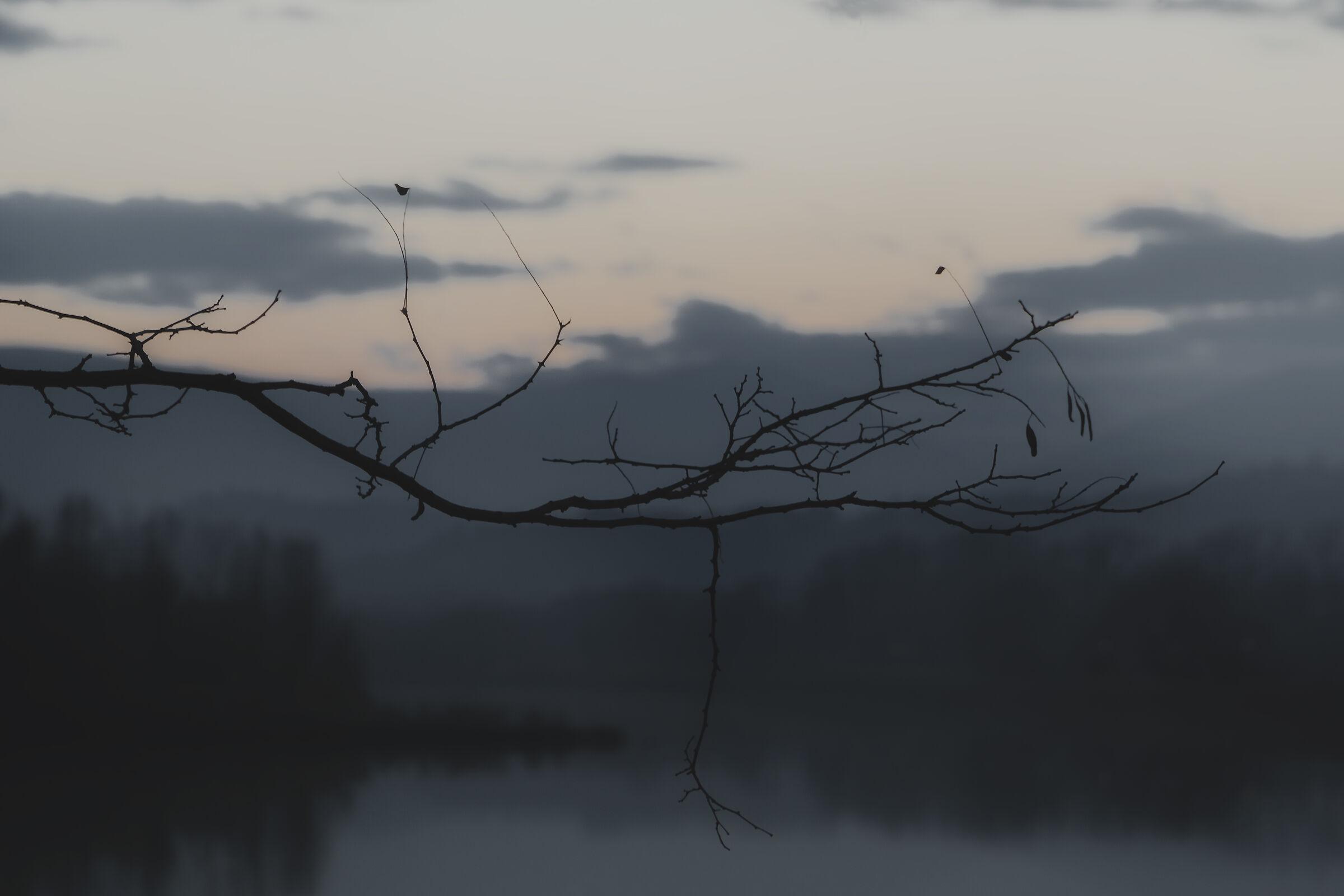 Dark Moody at Lake Le Grazie di Tolentino...