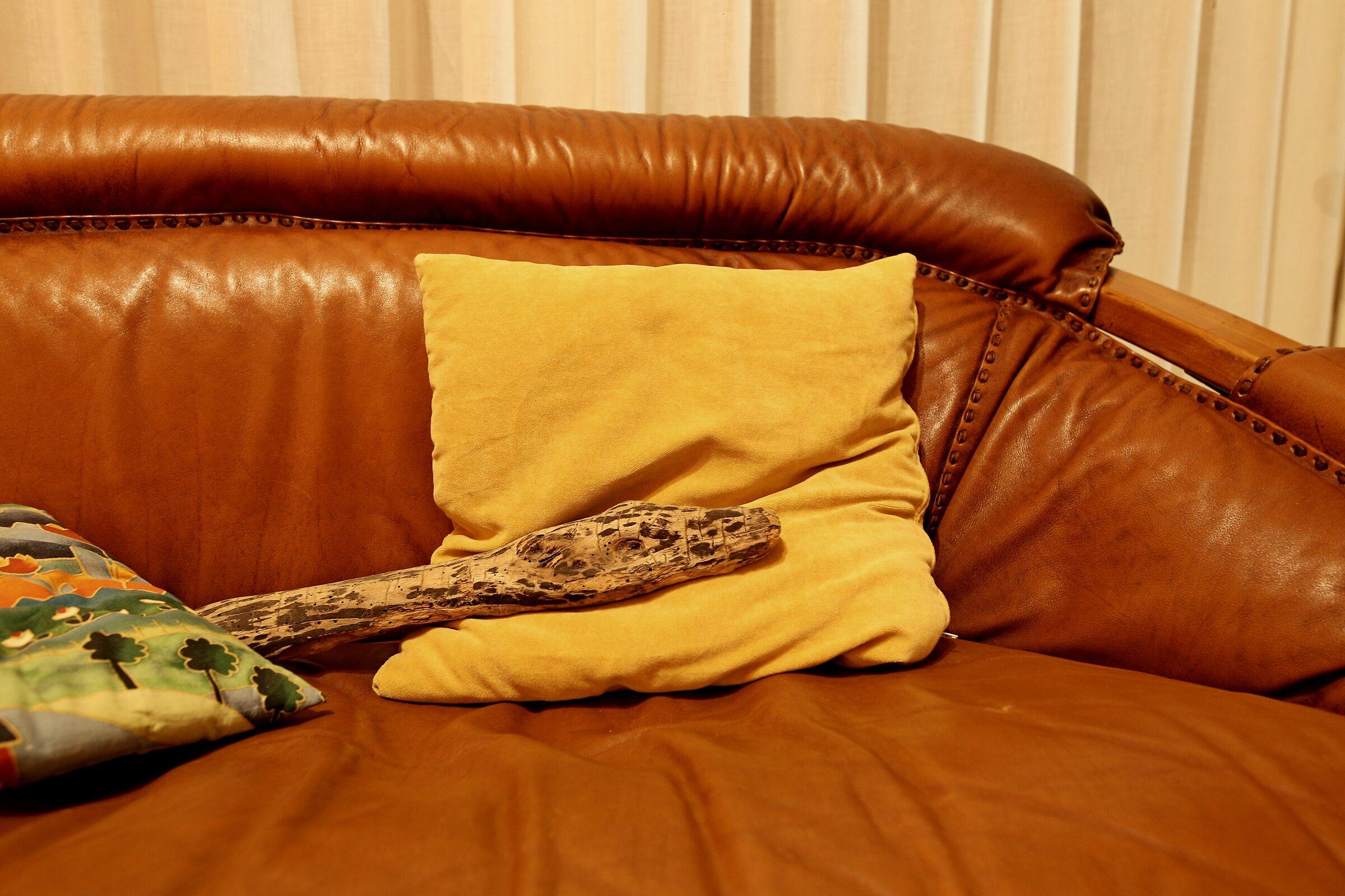 Una serpe in salotto...
