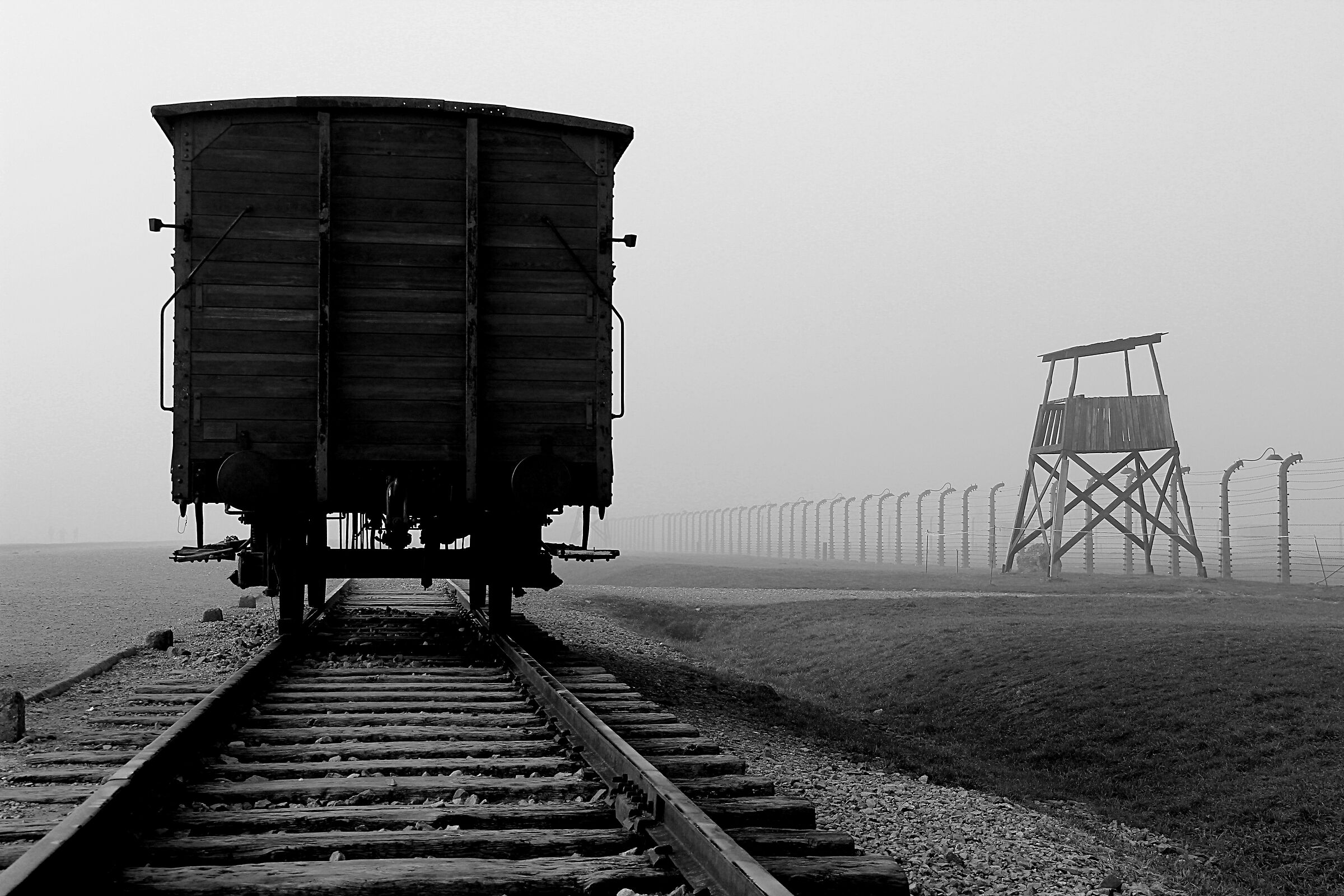 Birkenau. L'ultima fermata...