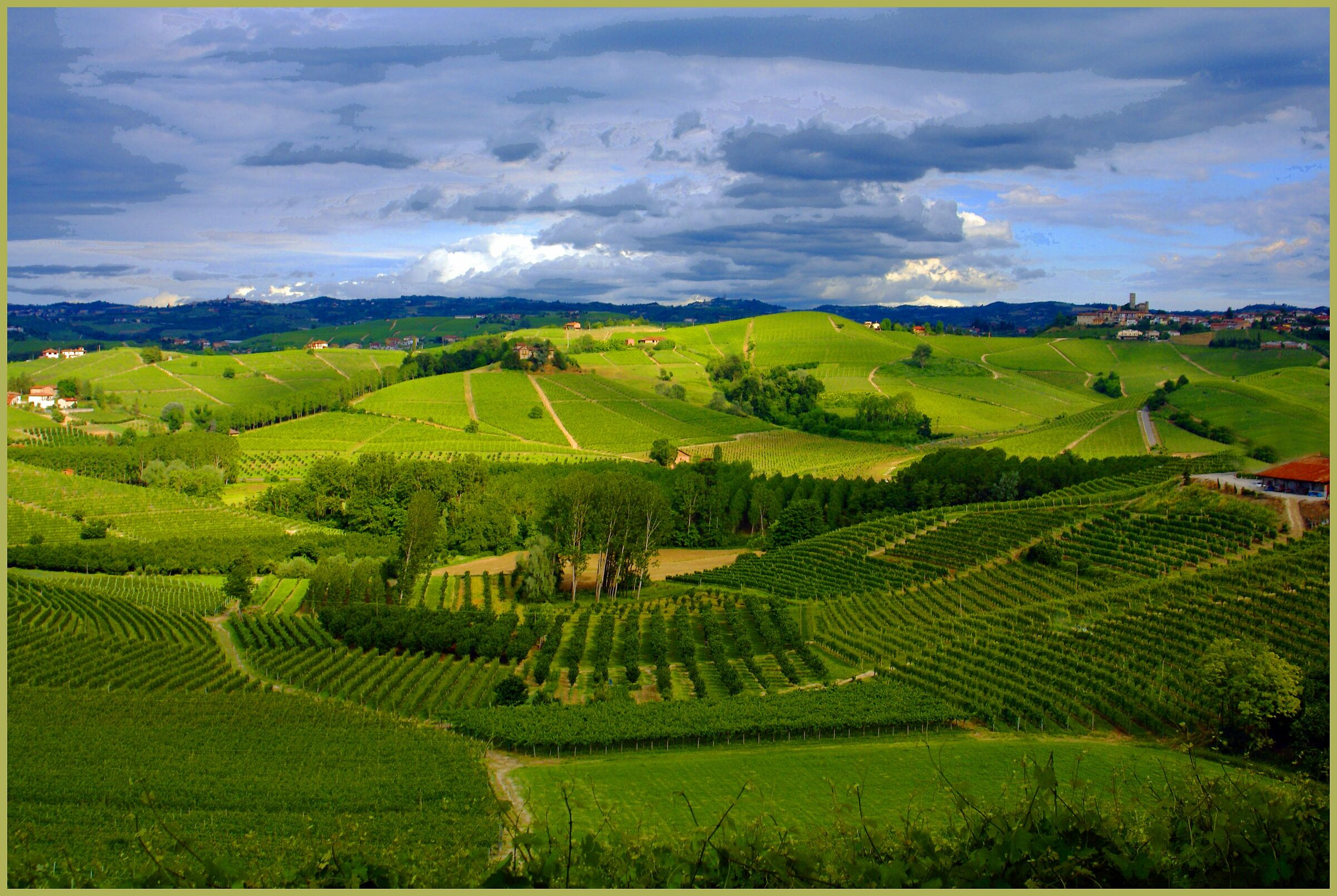 all over the Langhe ...