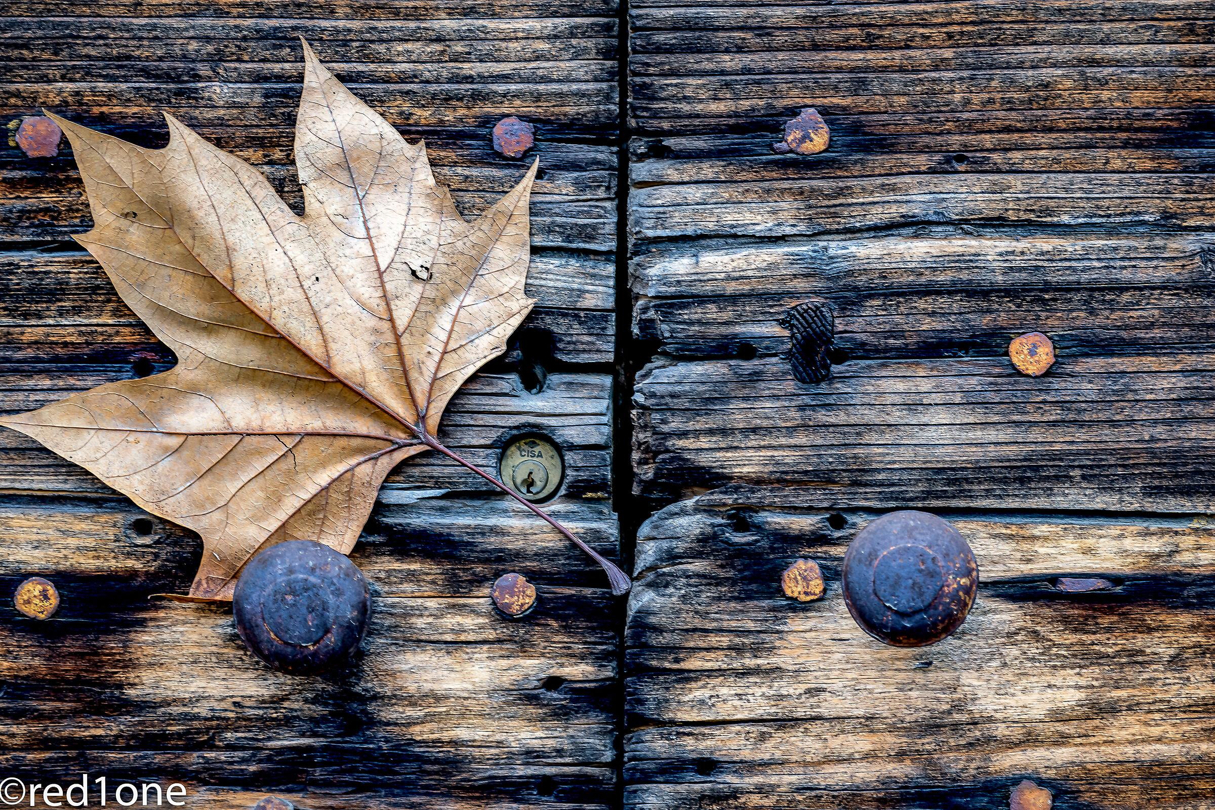 Door and leaf...