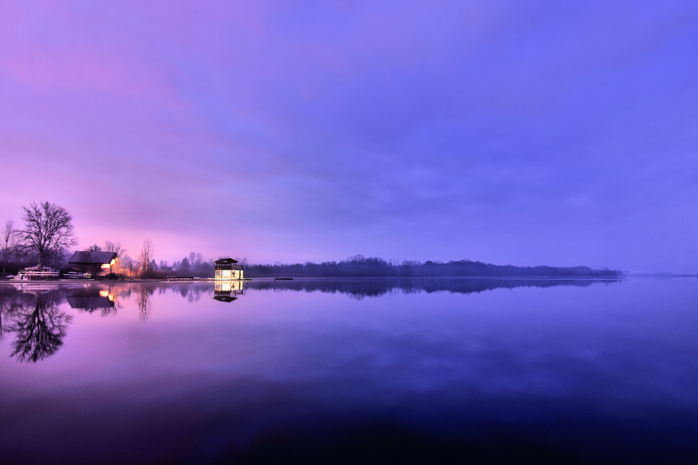 Purple Sunrise...
