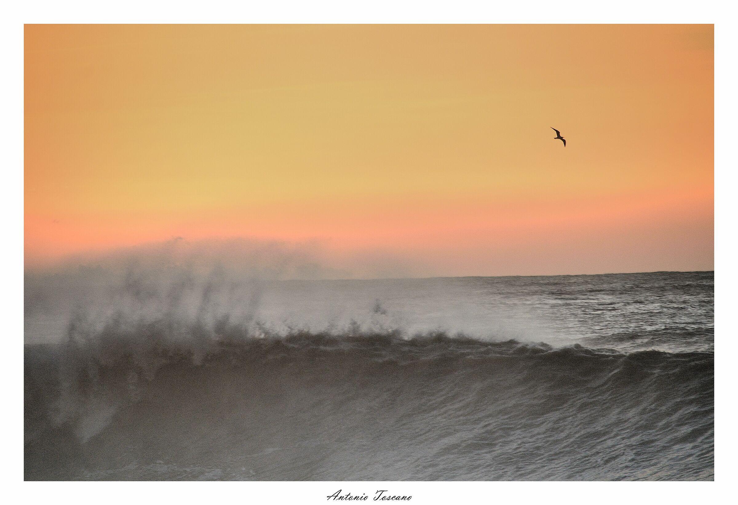 L'onda e il vento...