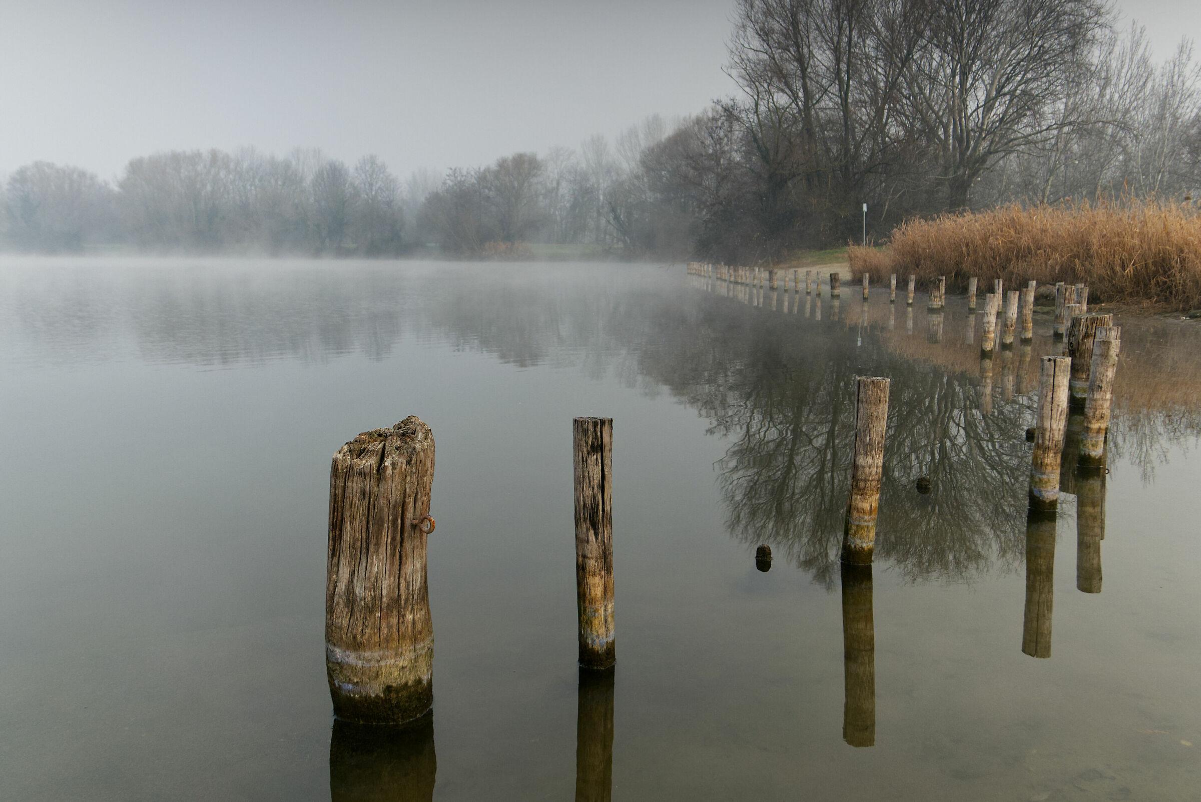 La suggestione della nebbia...
