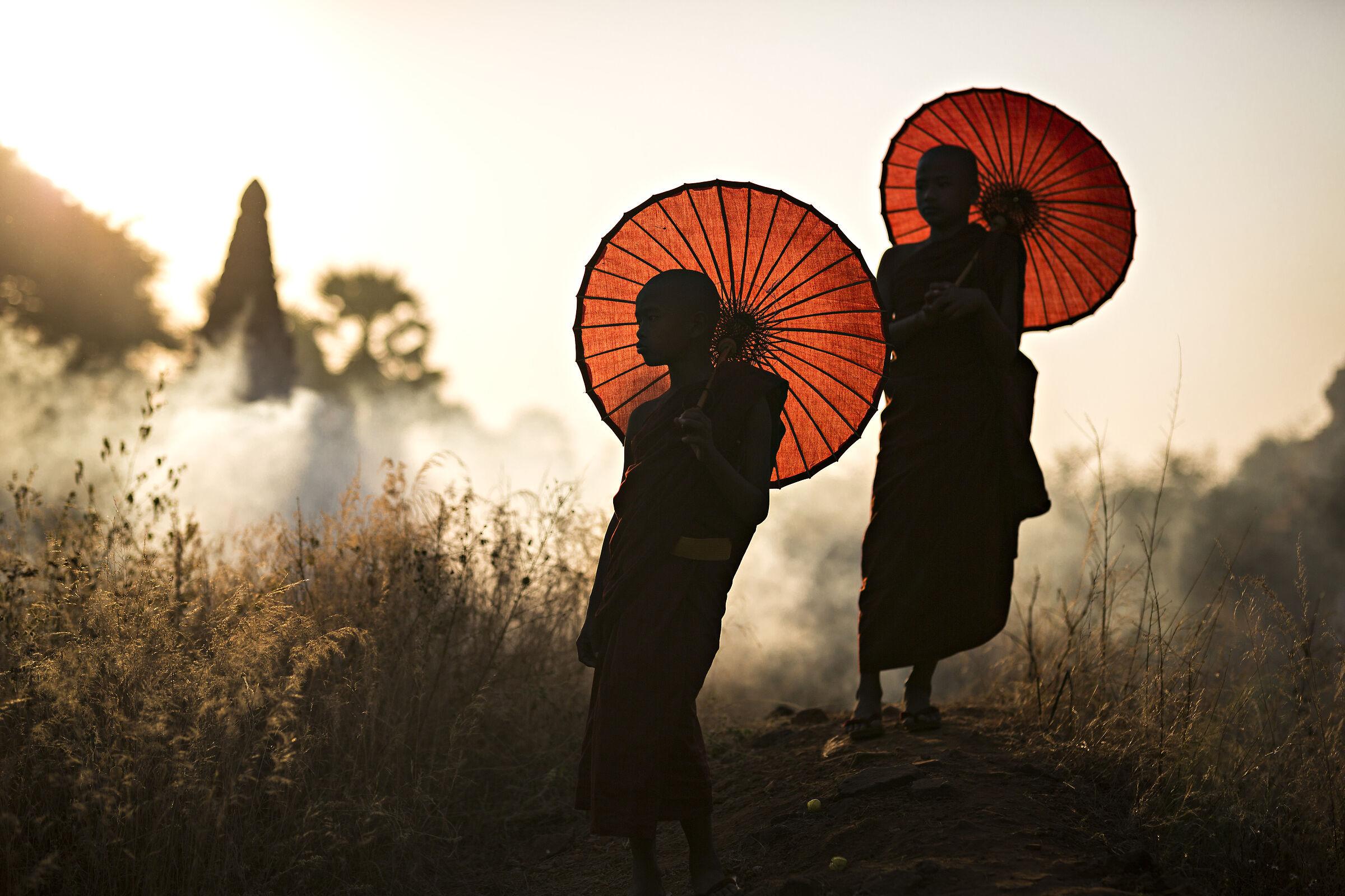 Burmese monks...