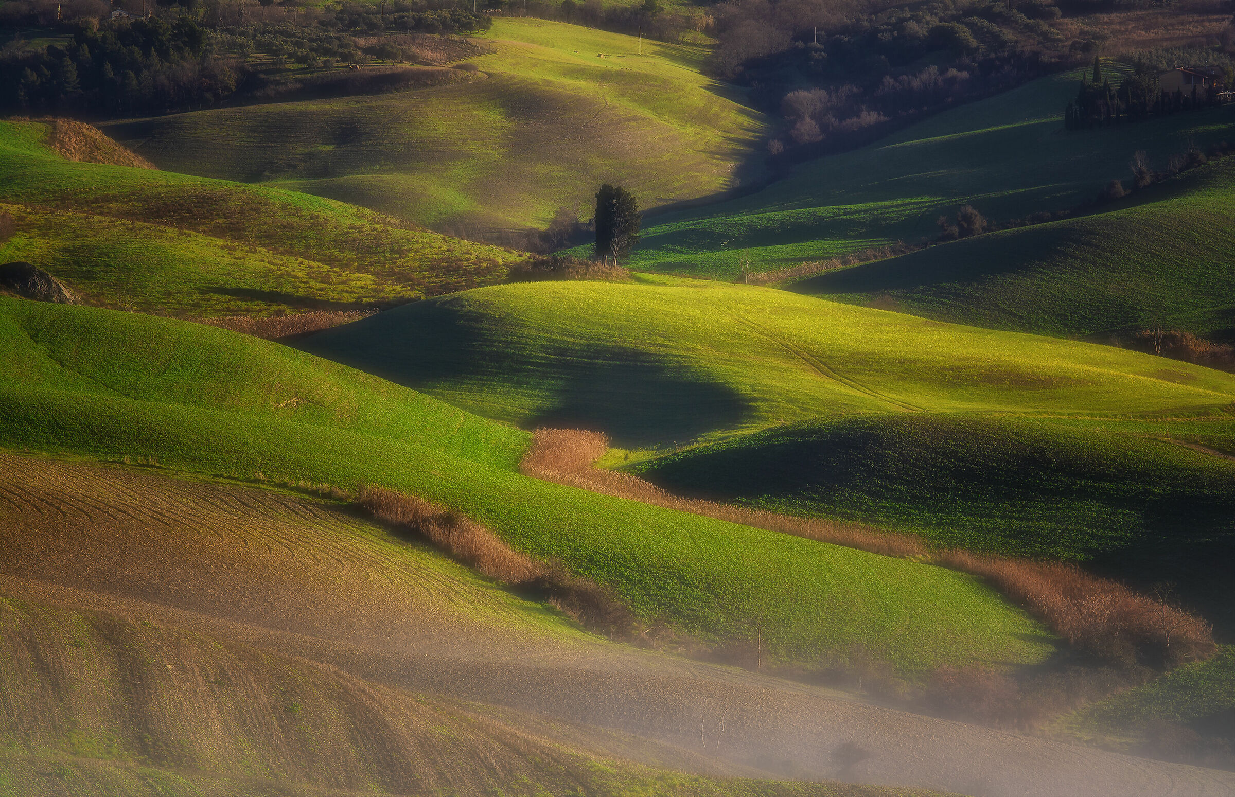 Green, sweet, hills on a cold winter morning...