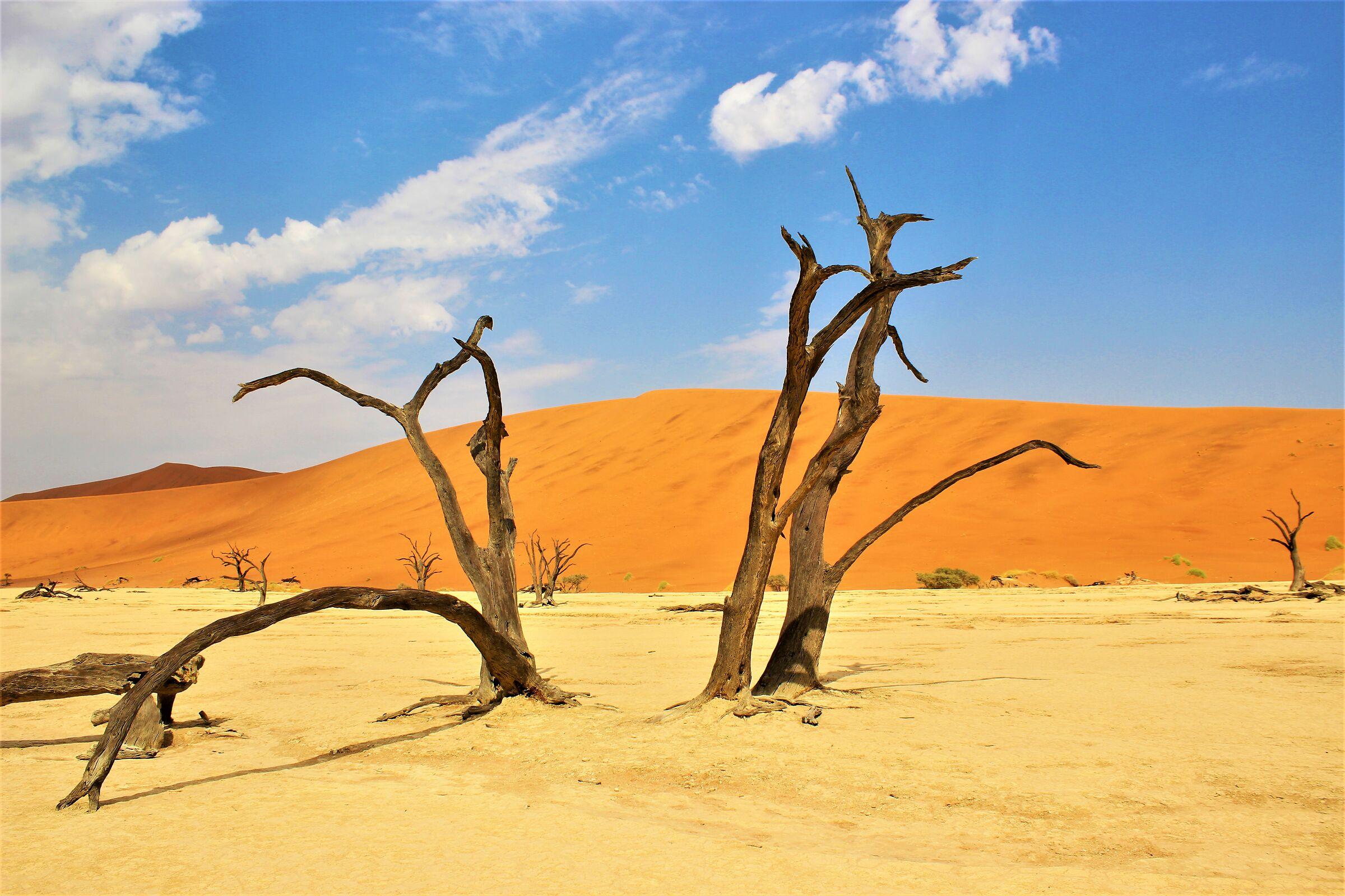 sculture nel deserto ( braccia protese verso il cielo)...