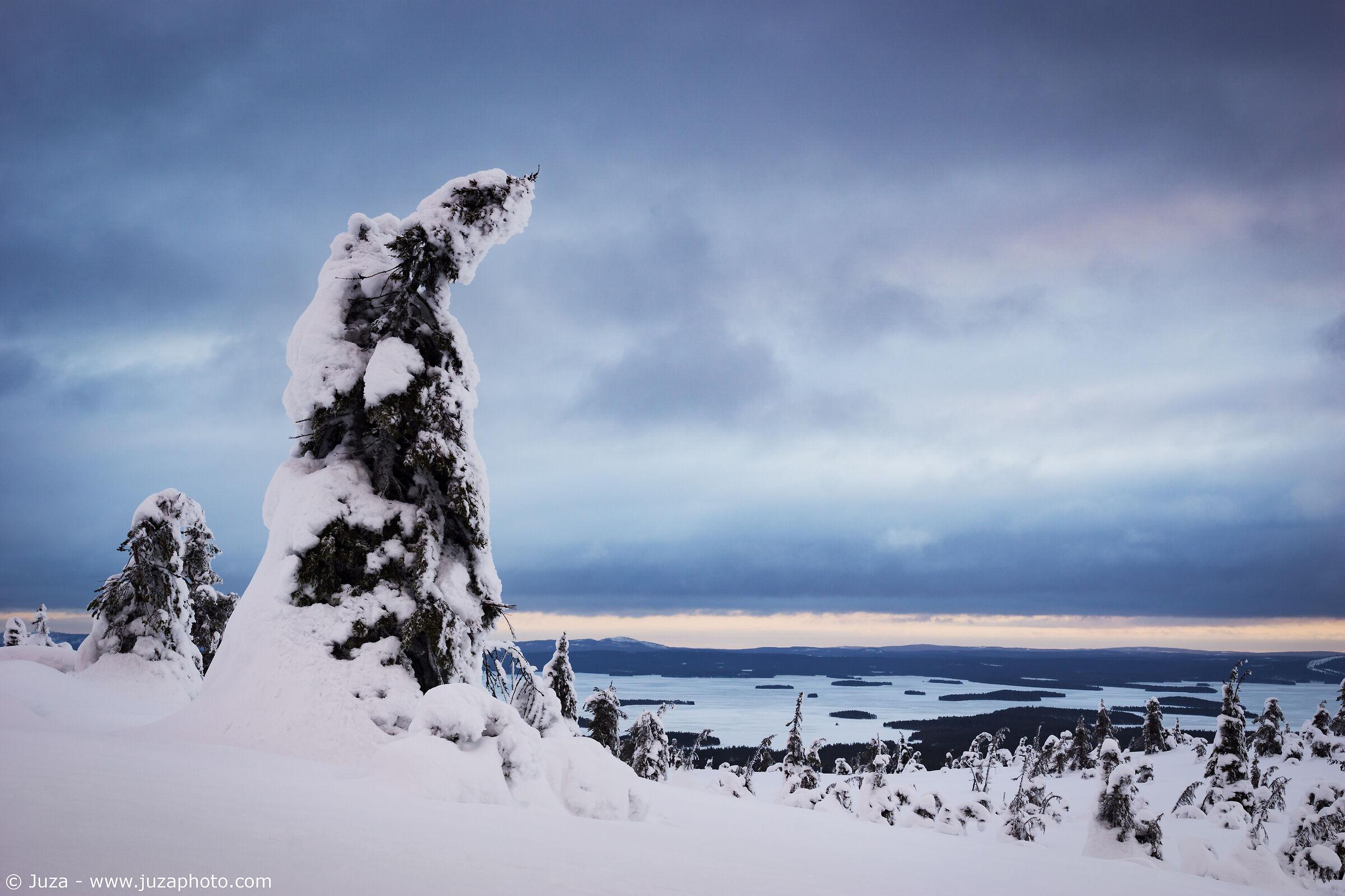 View of Riisitunturi...