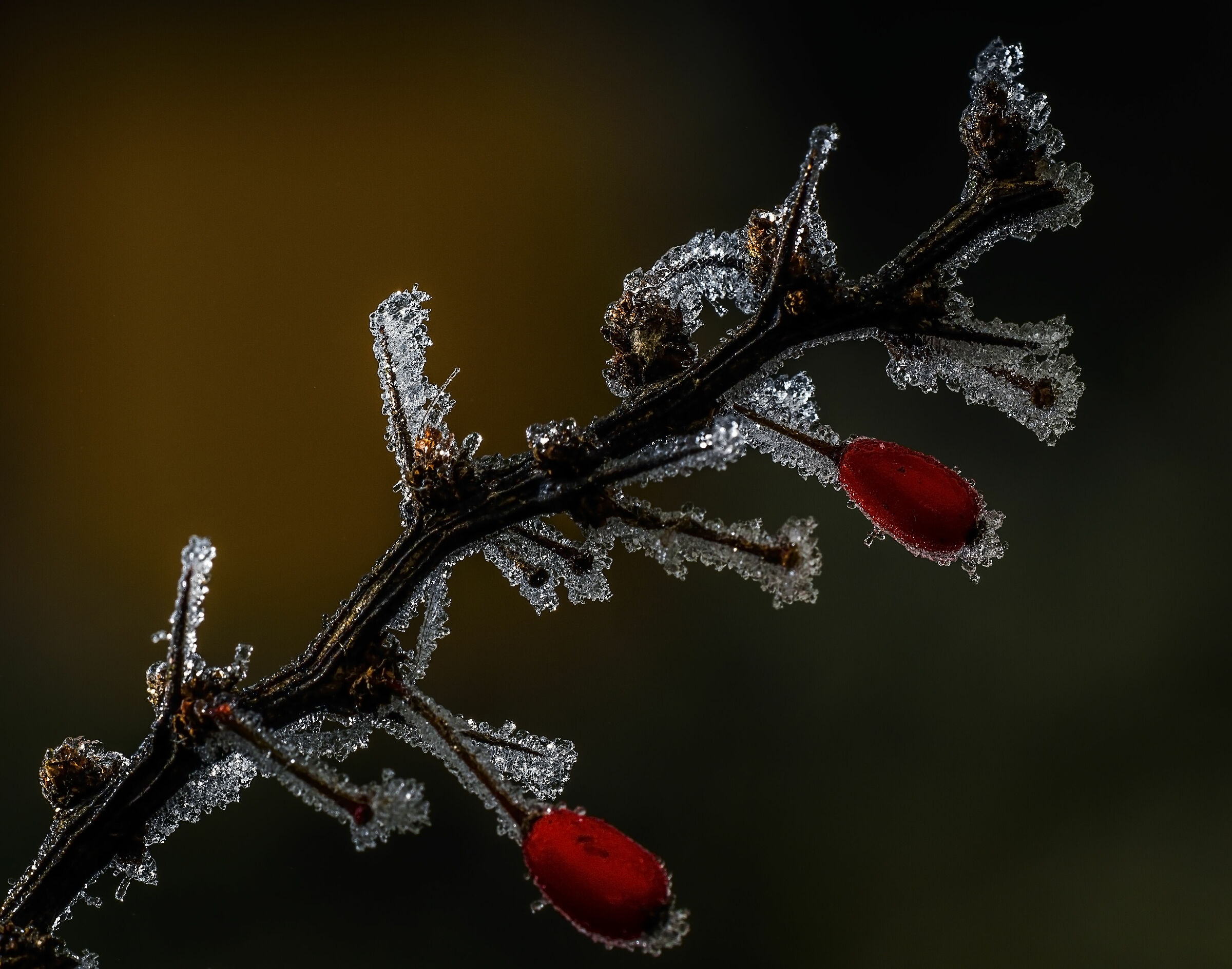 Crystalline...