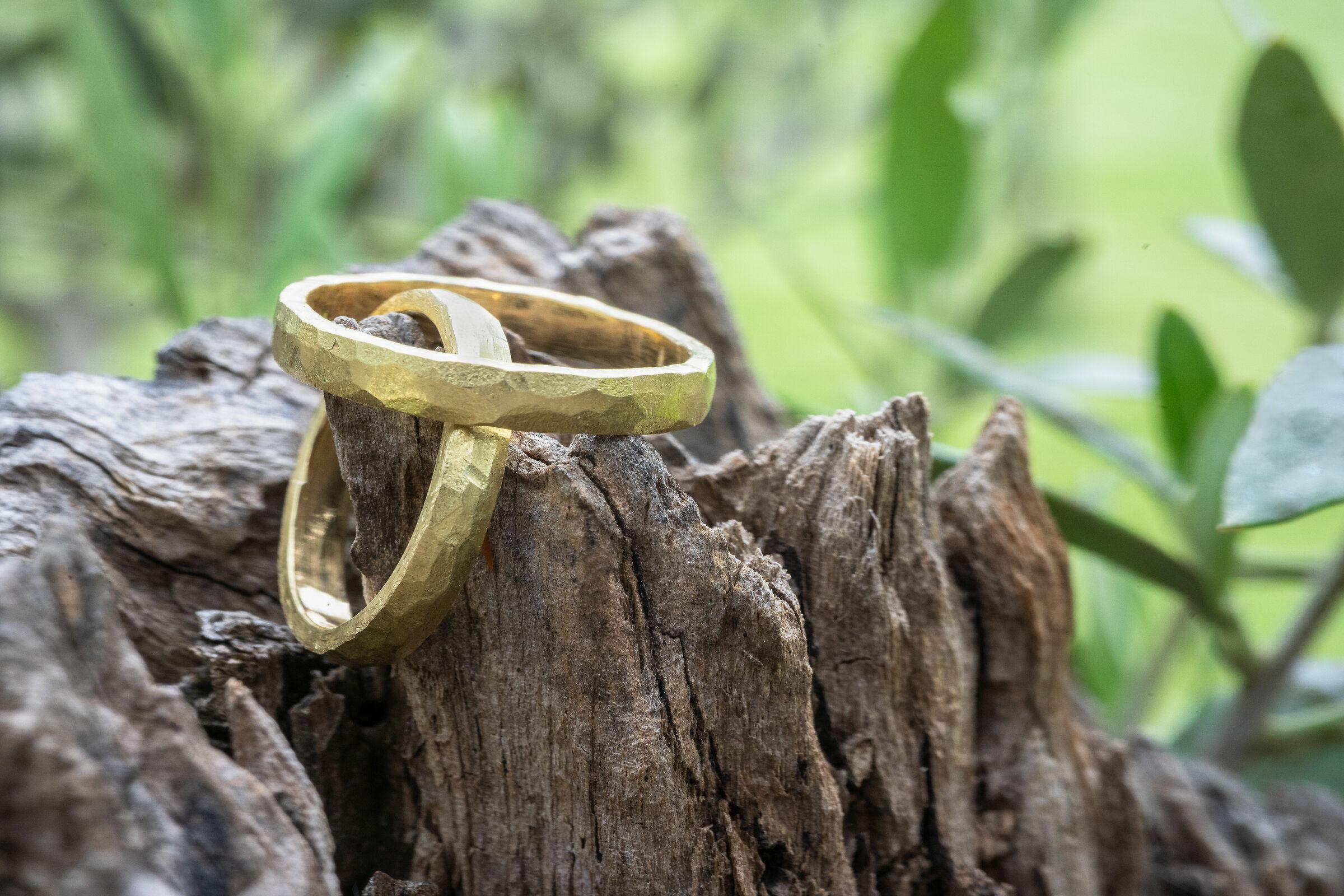 Rings between nature...