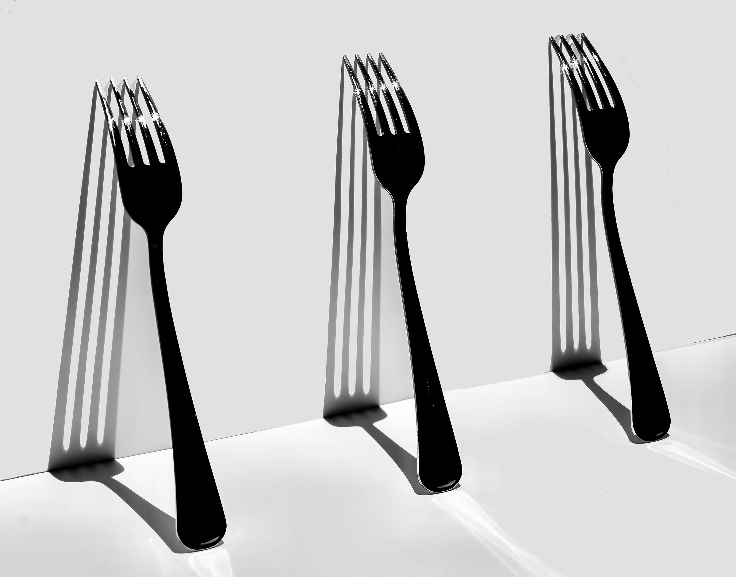 Fork with his shadow...