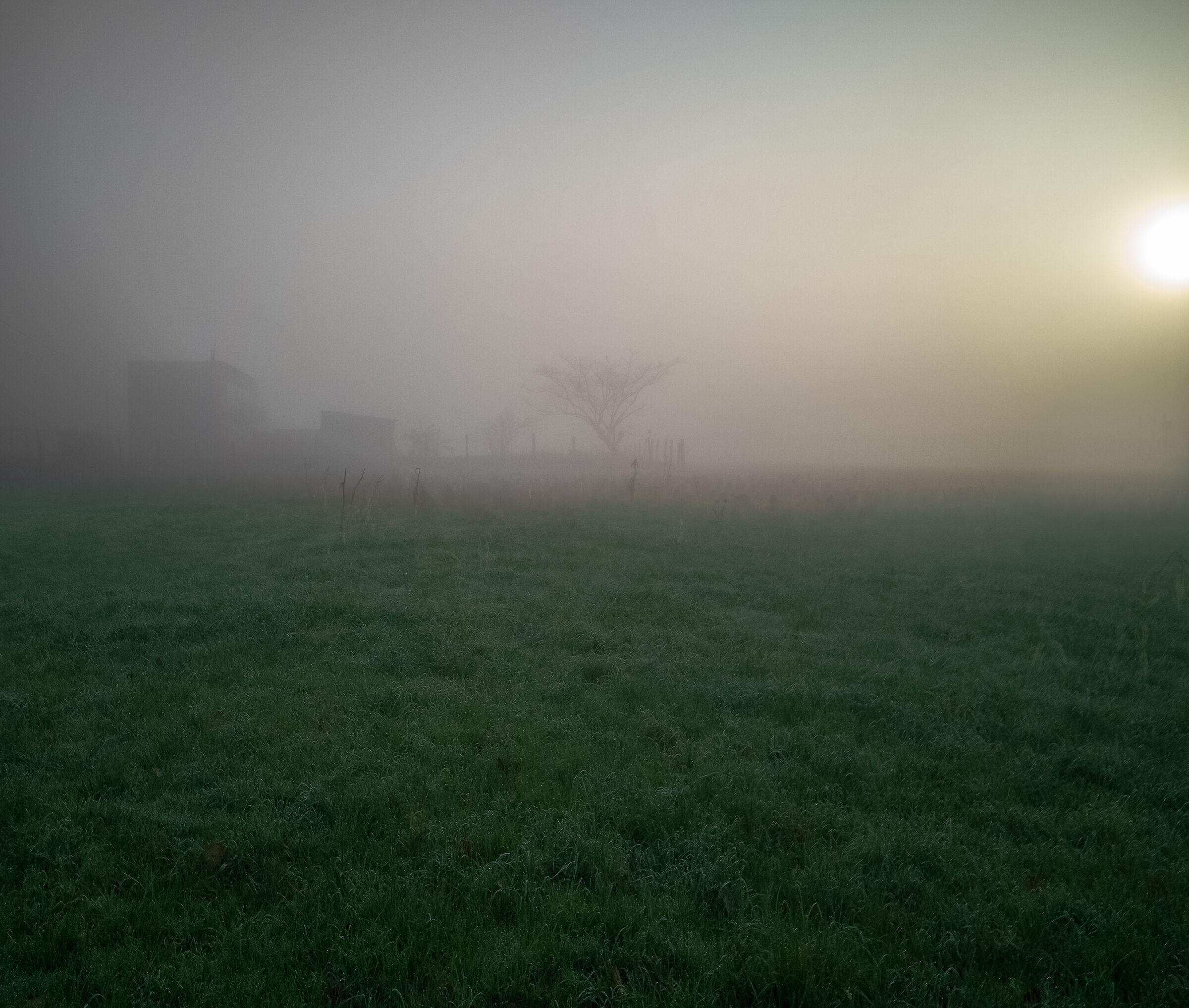 Fog in val. Vesuvian :)...