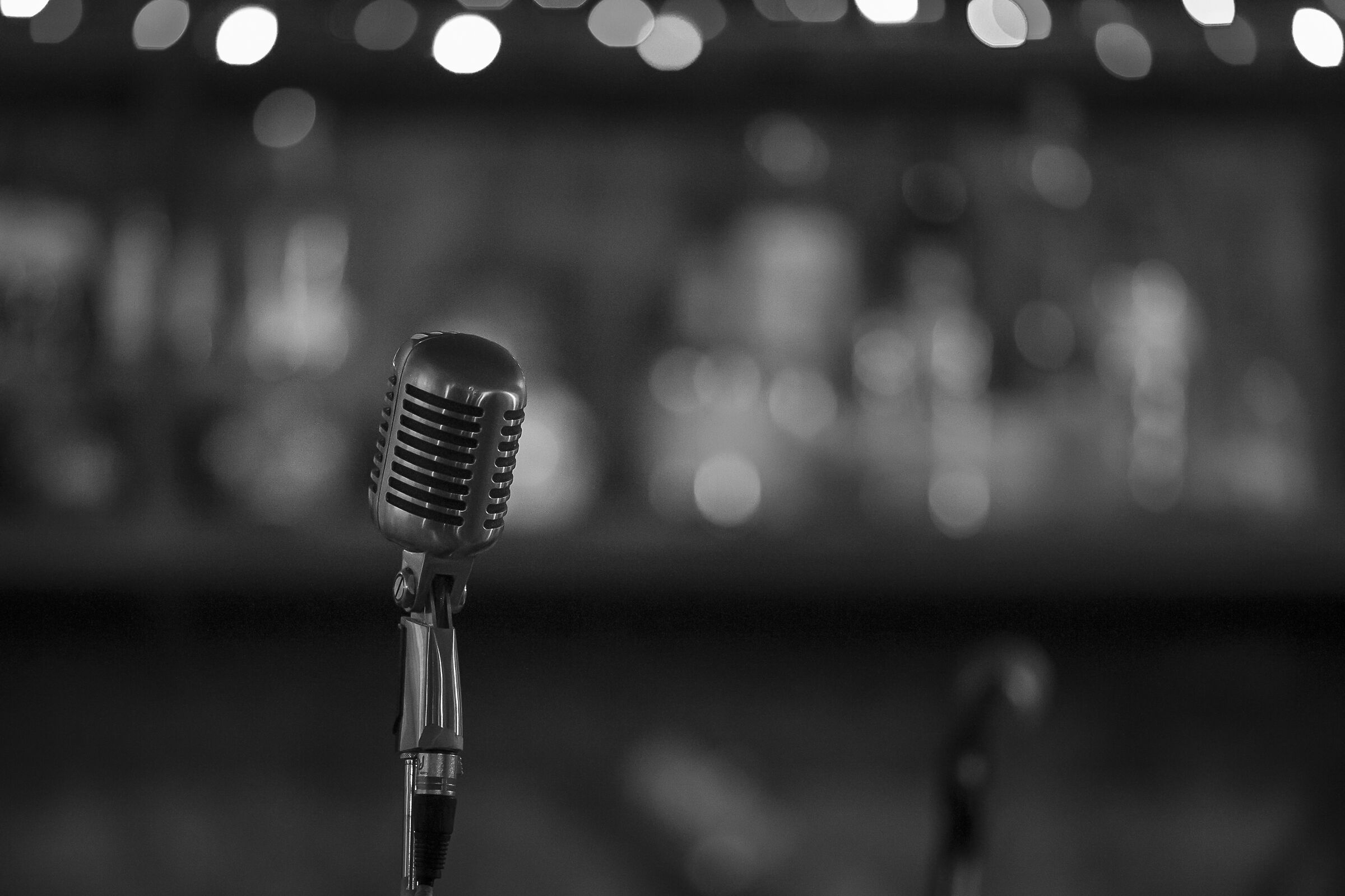 The Brilliantna's microphone...