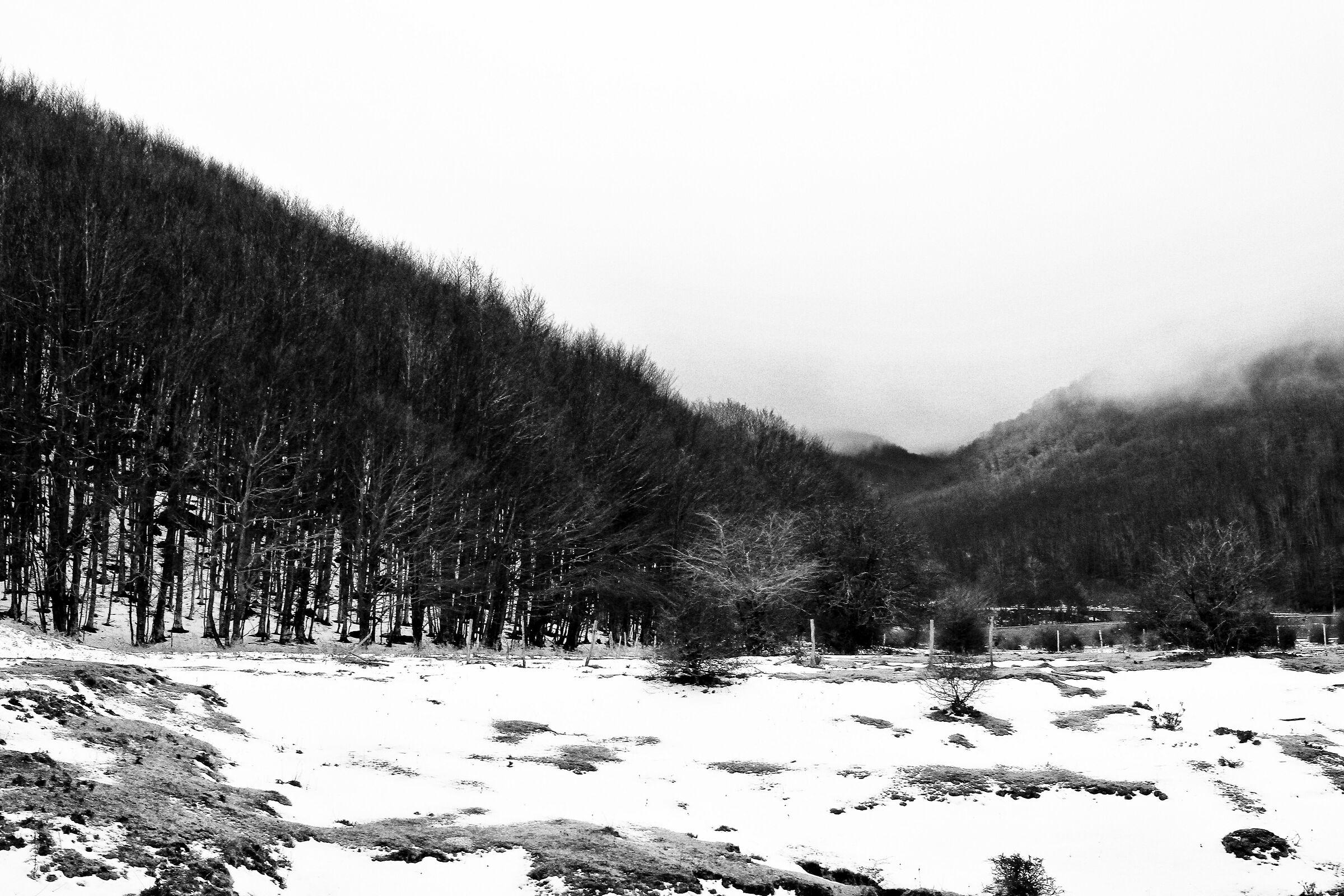 Terminio Massif Valley...