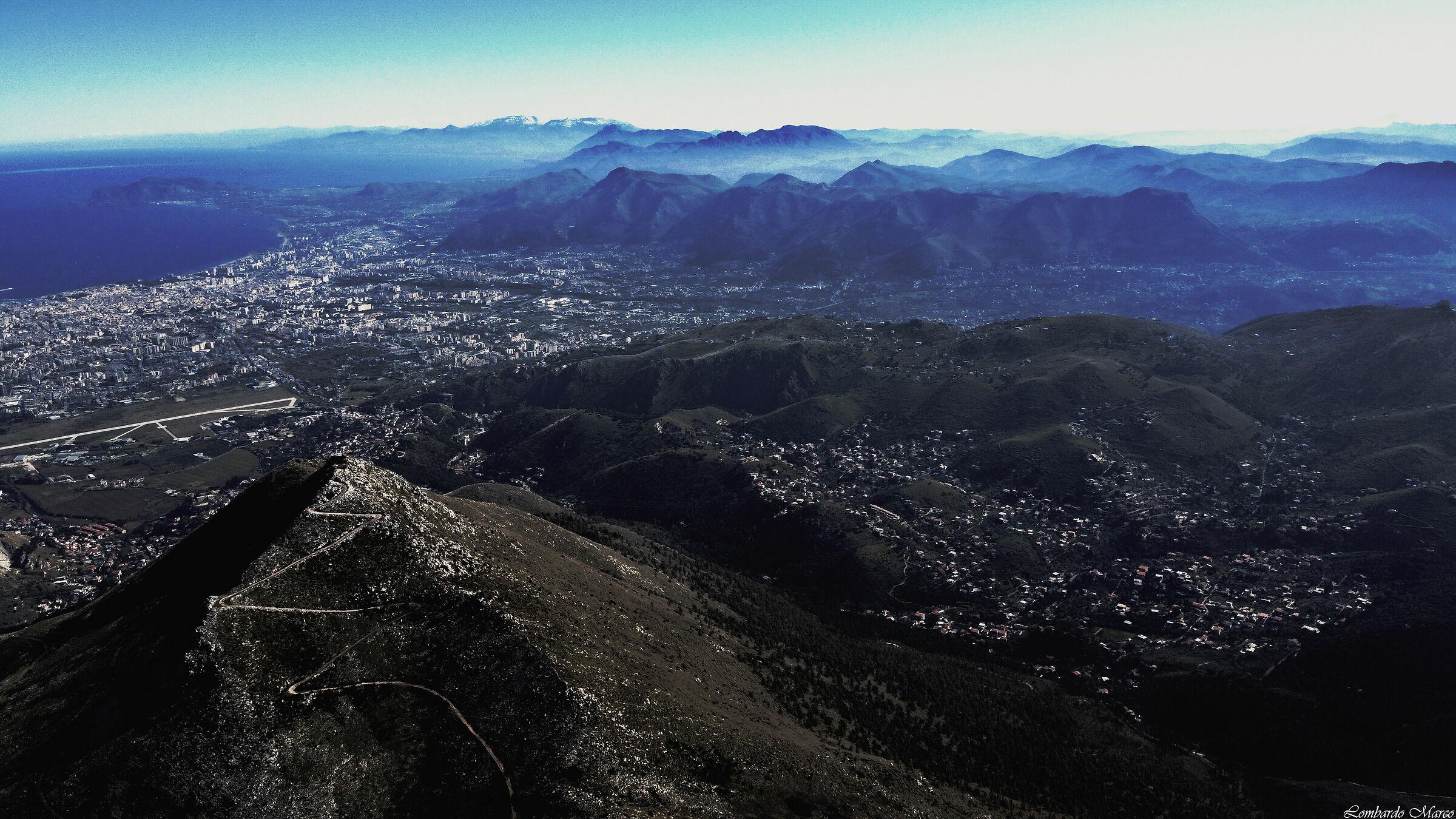 Mount Puppy ...