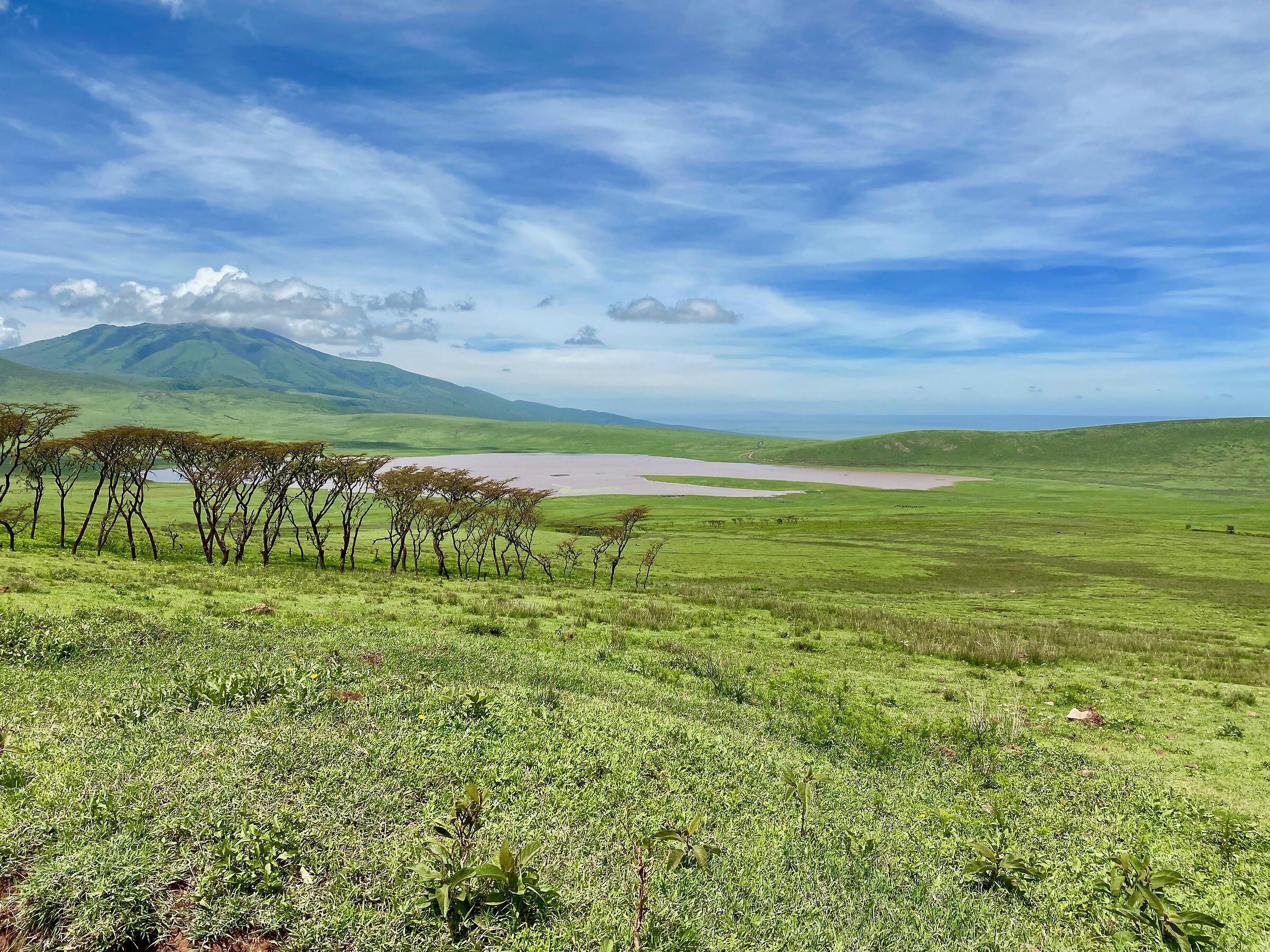 Cratere Ngoro Ngoro Tanzania...