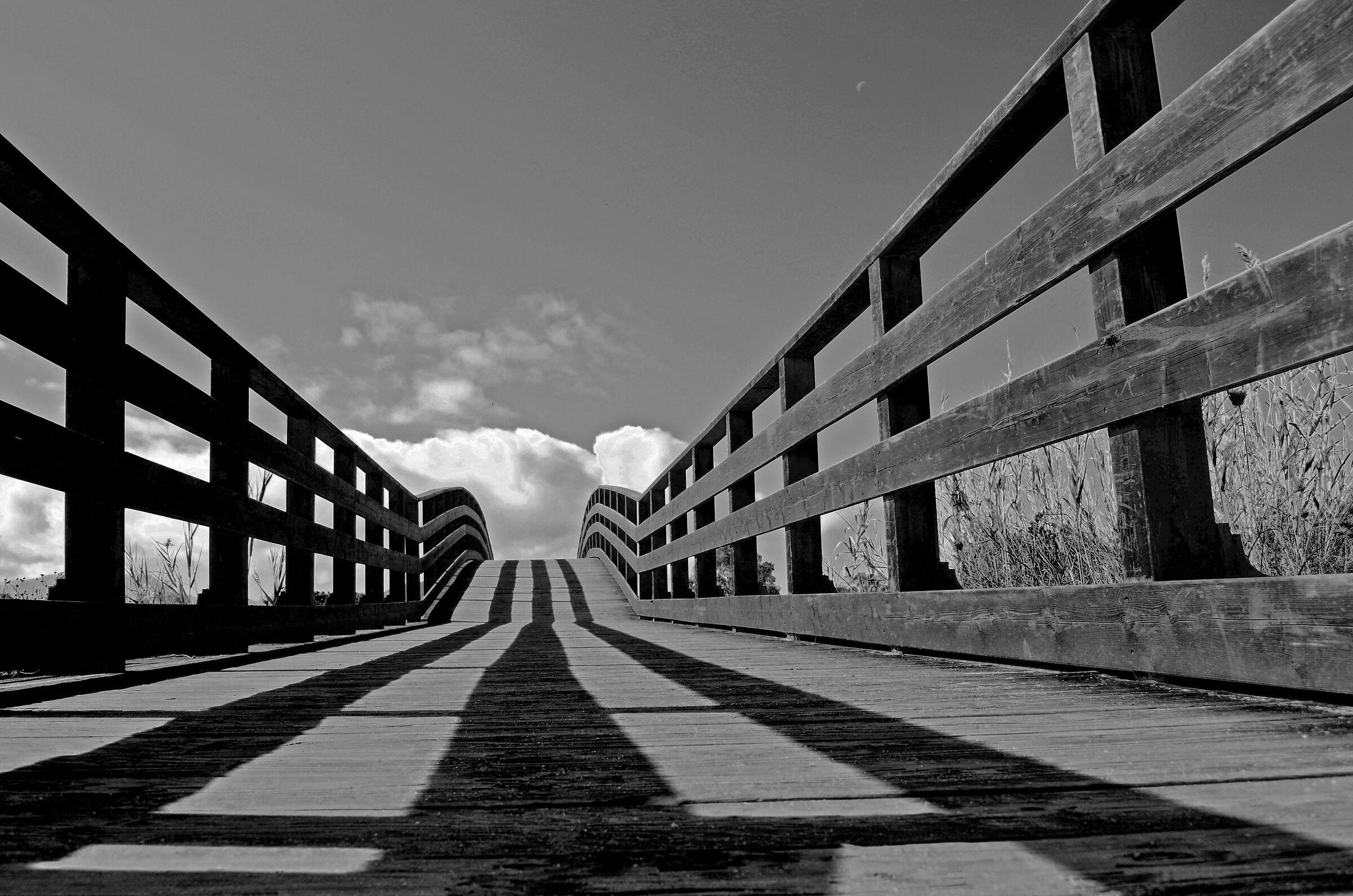 ponte...
