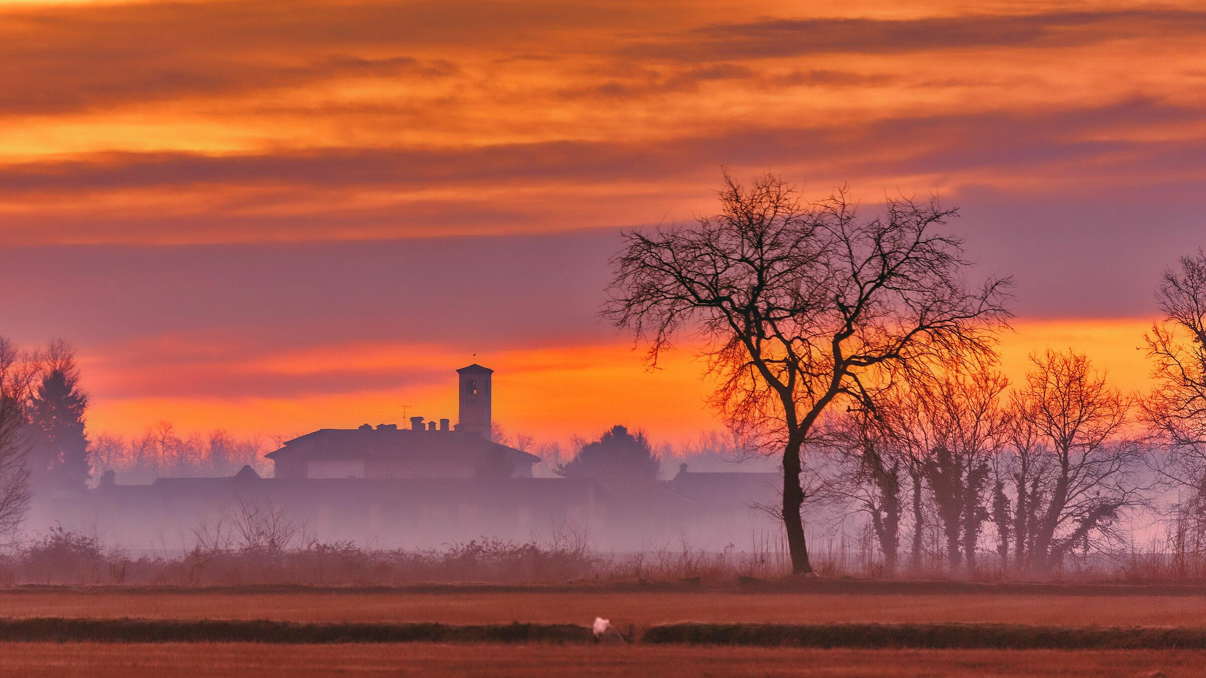 Un albero,una chiesa e un po di nebbia...