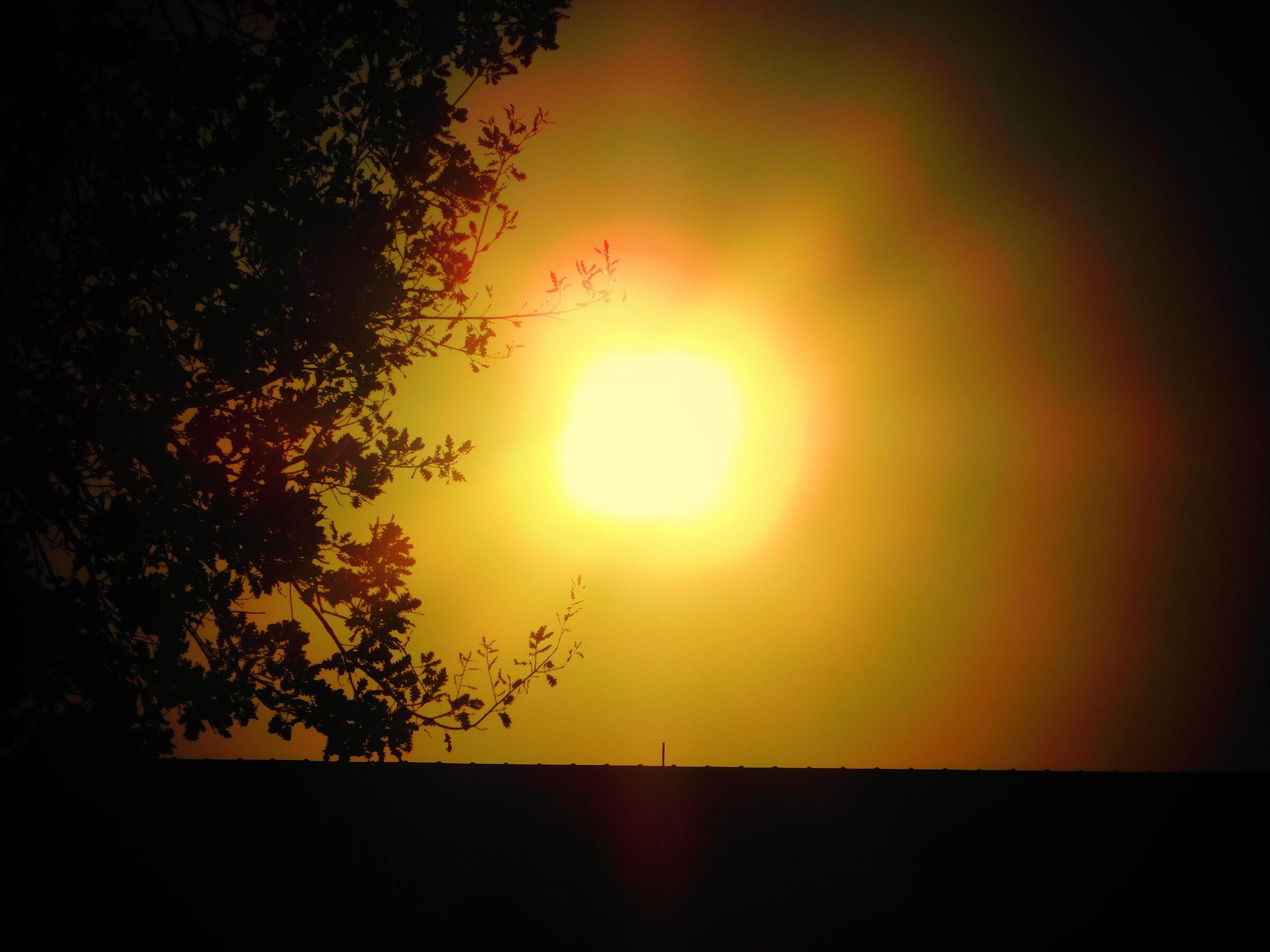 Details at sunset...