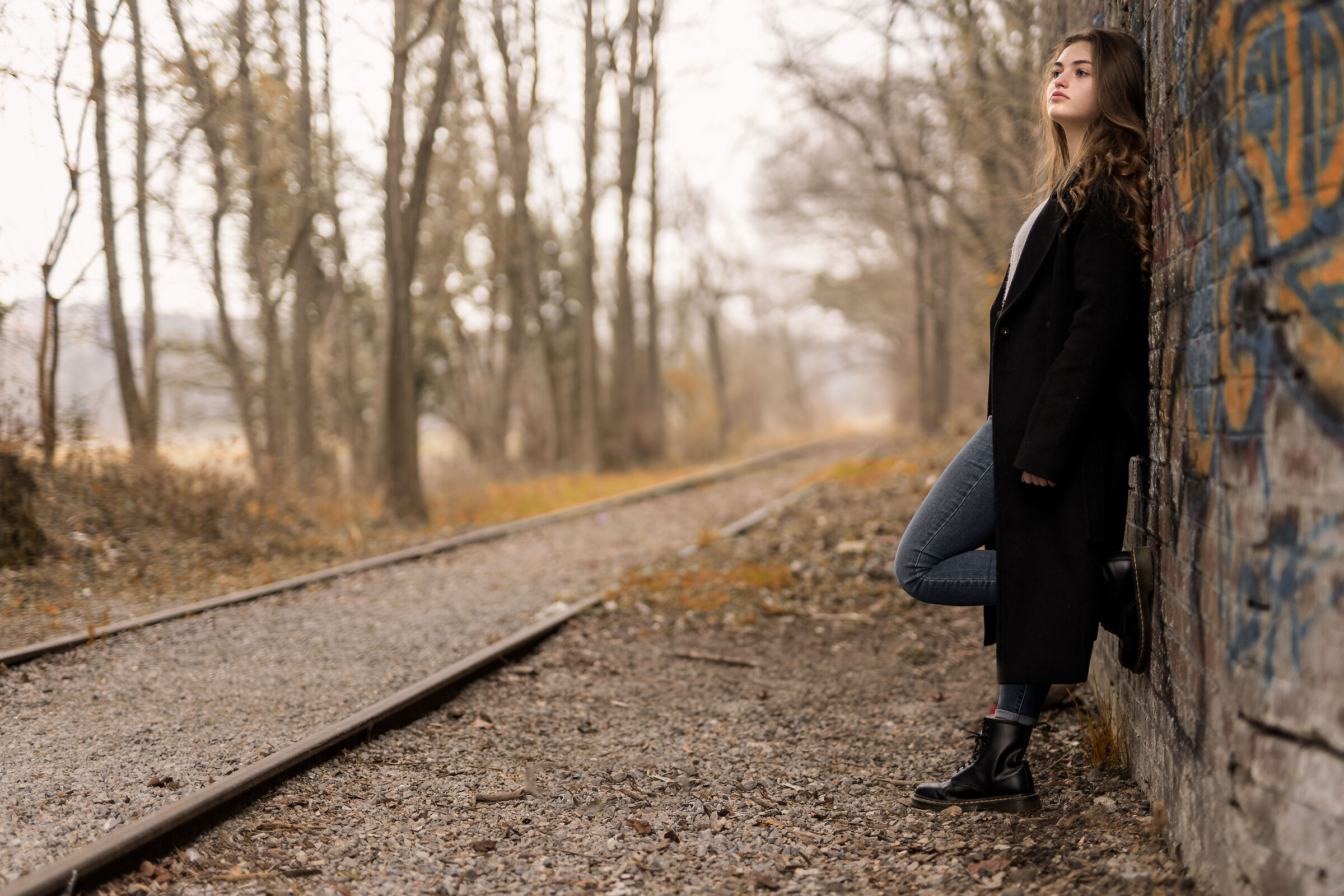 La ferrovia...