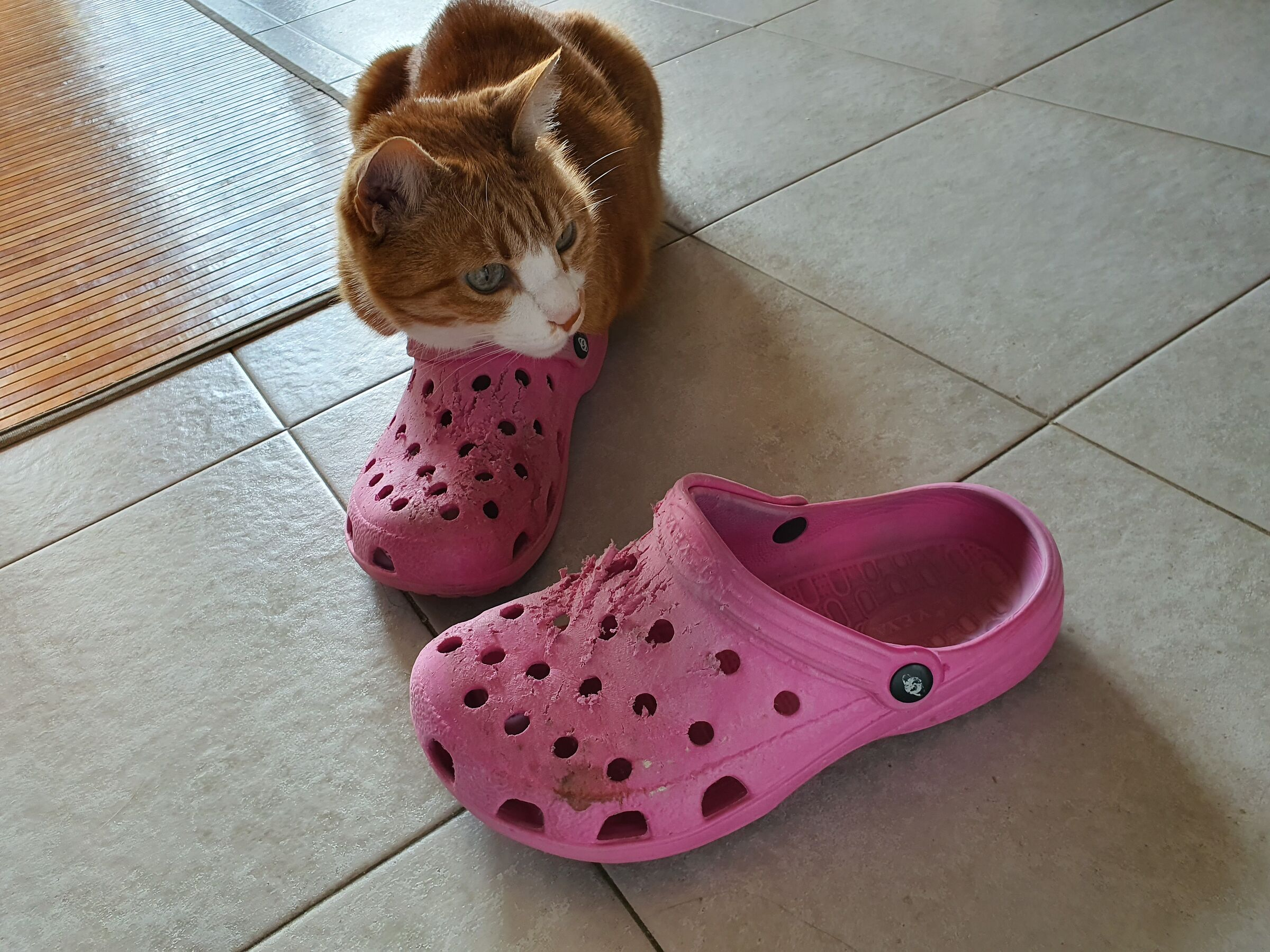 Chicco and slippers ...